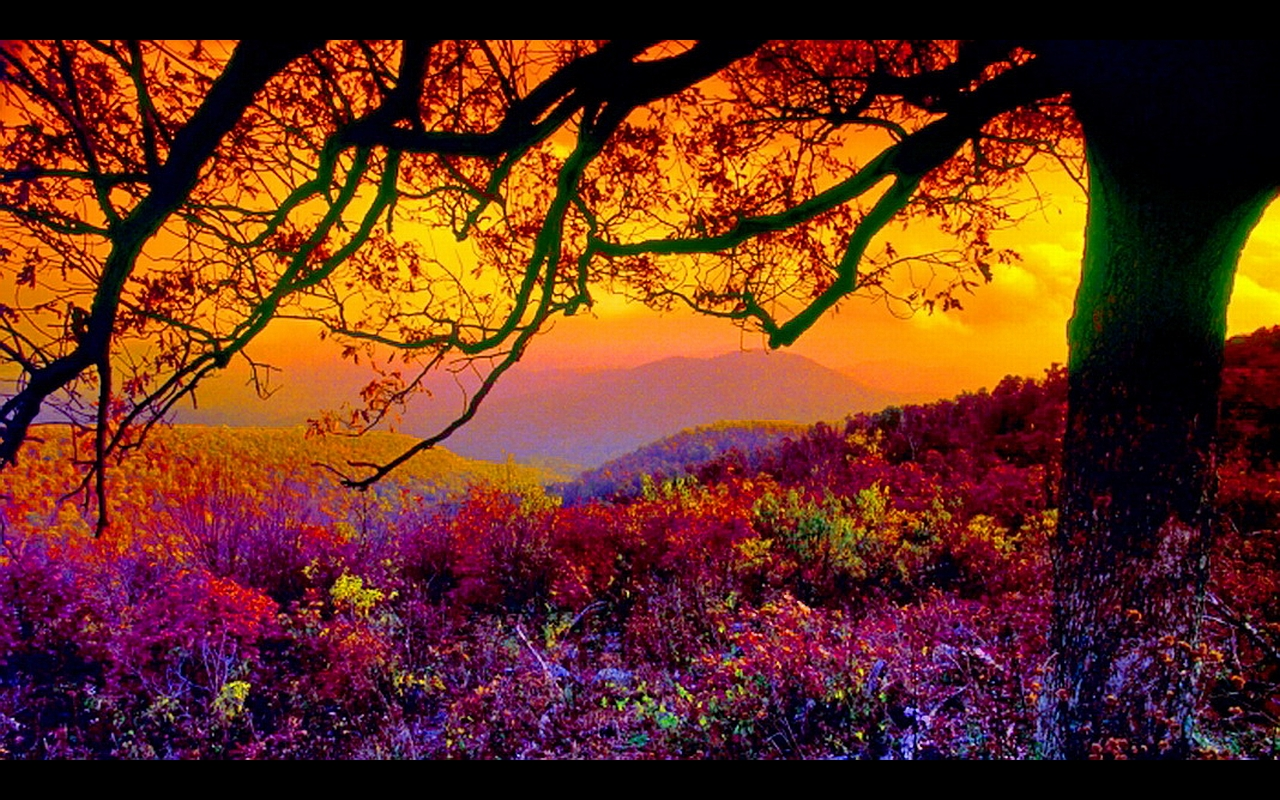 Scenic desktop wallpapers wallpapersafari - Nature background pictures for computer ...