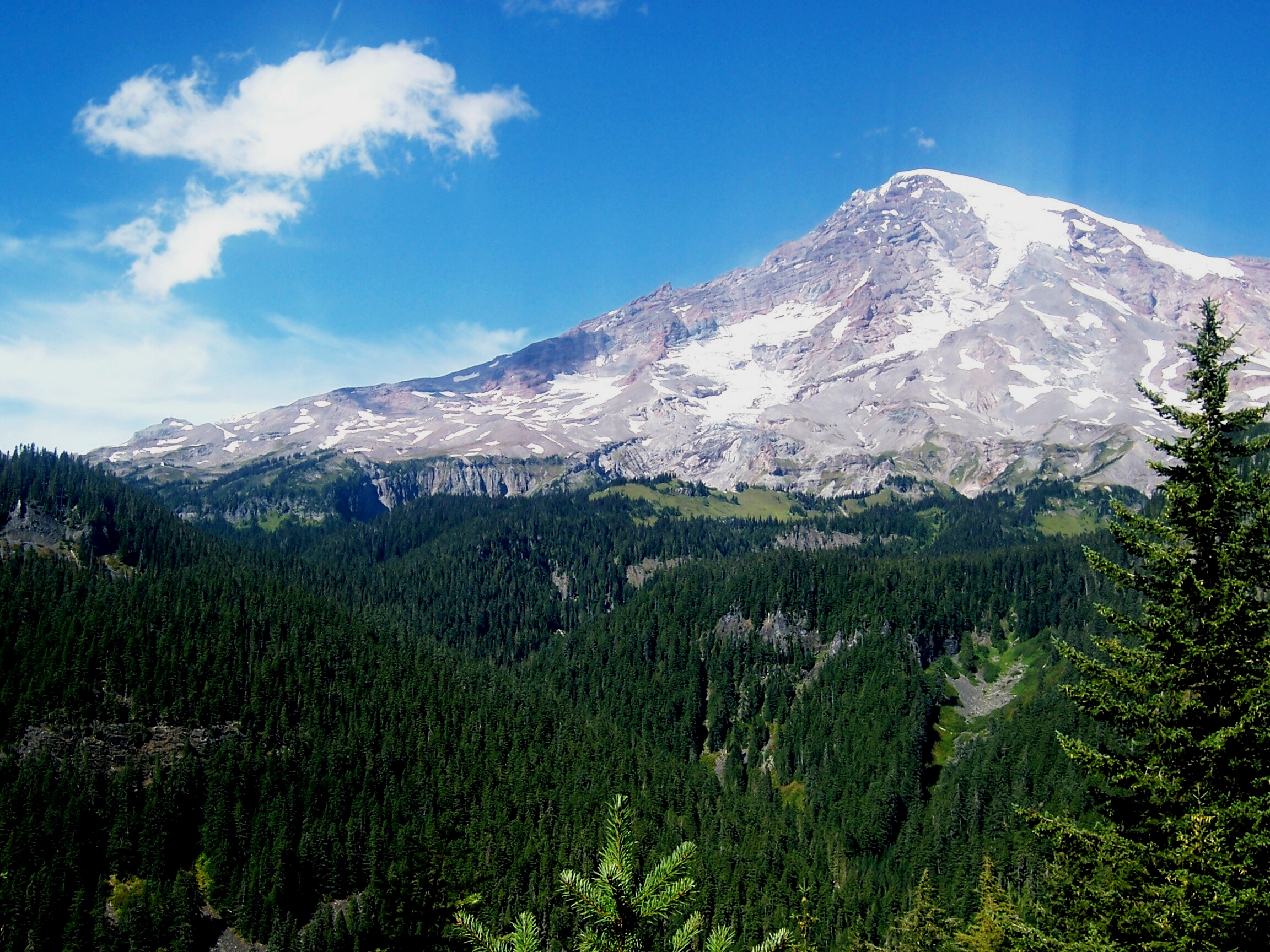 mount rainier in the sun 2304x1728