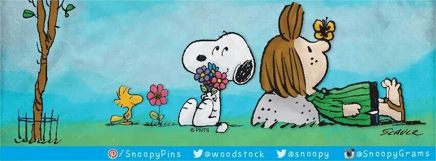Spring flowers I love Charlie Brown Pinterest 852x316