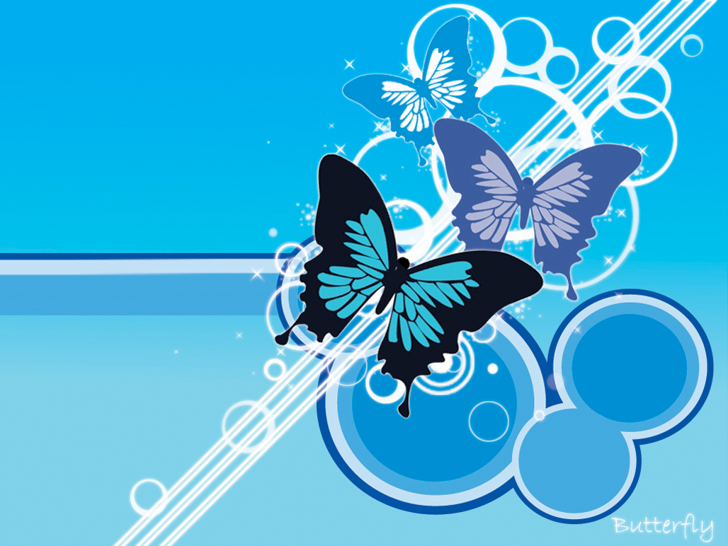 Free Download Cute Photography Love Butterfly Wallpaper 1028x772