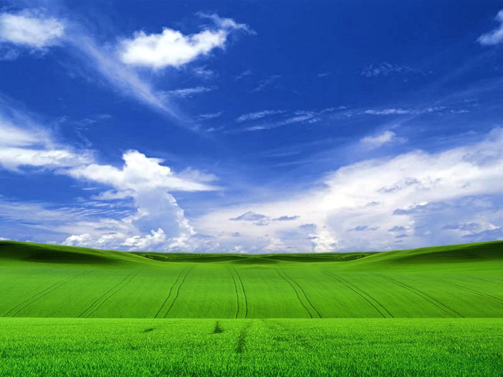 Cool wallpaper wallpaper downloads Field in windows xp style 1600x1200