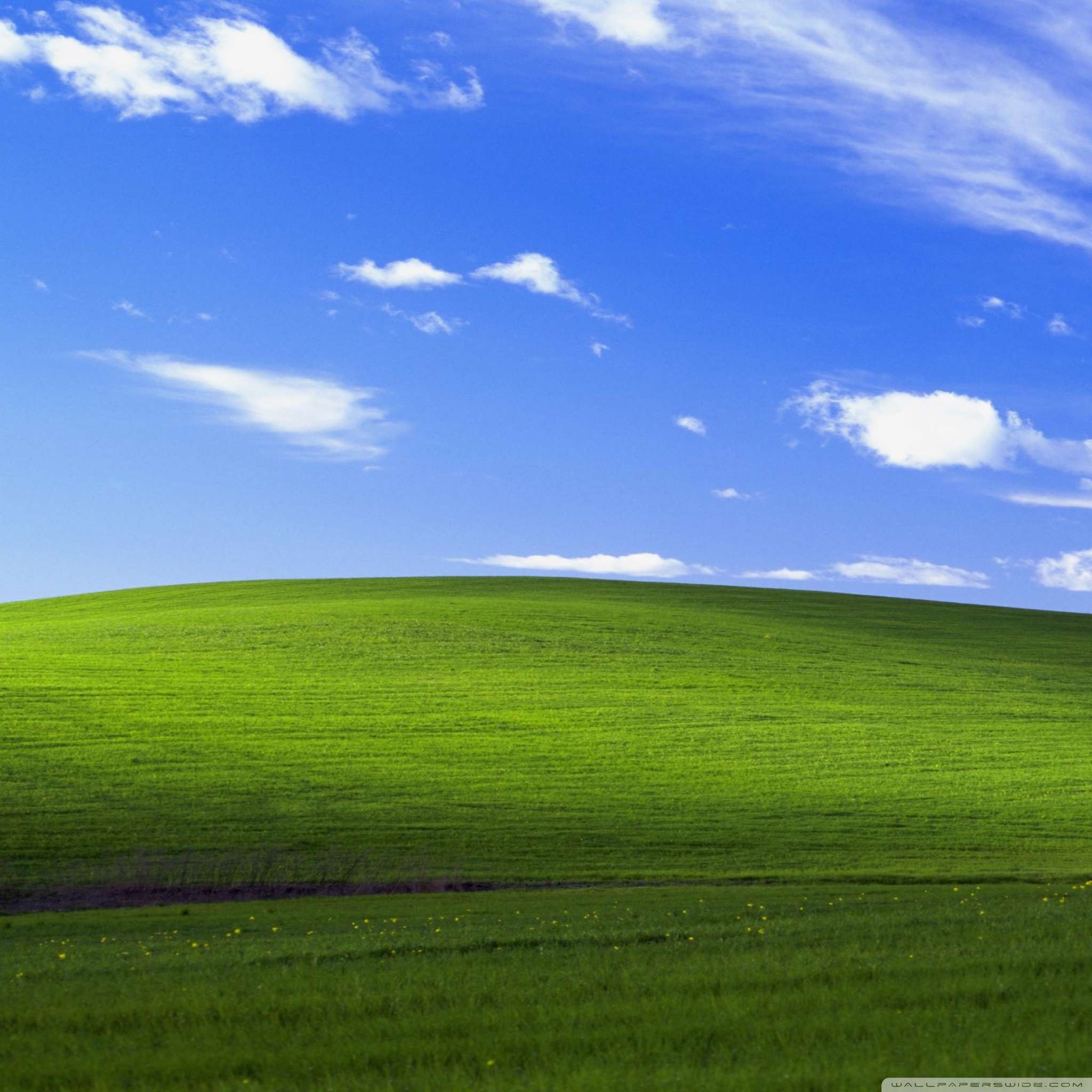 Windows XP Ultra HD Desktop Background Wallpaper for 4K UHD TV 2048x2048