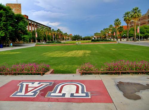 University of Arizona campus Flickr   Photo Sharing 500x369