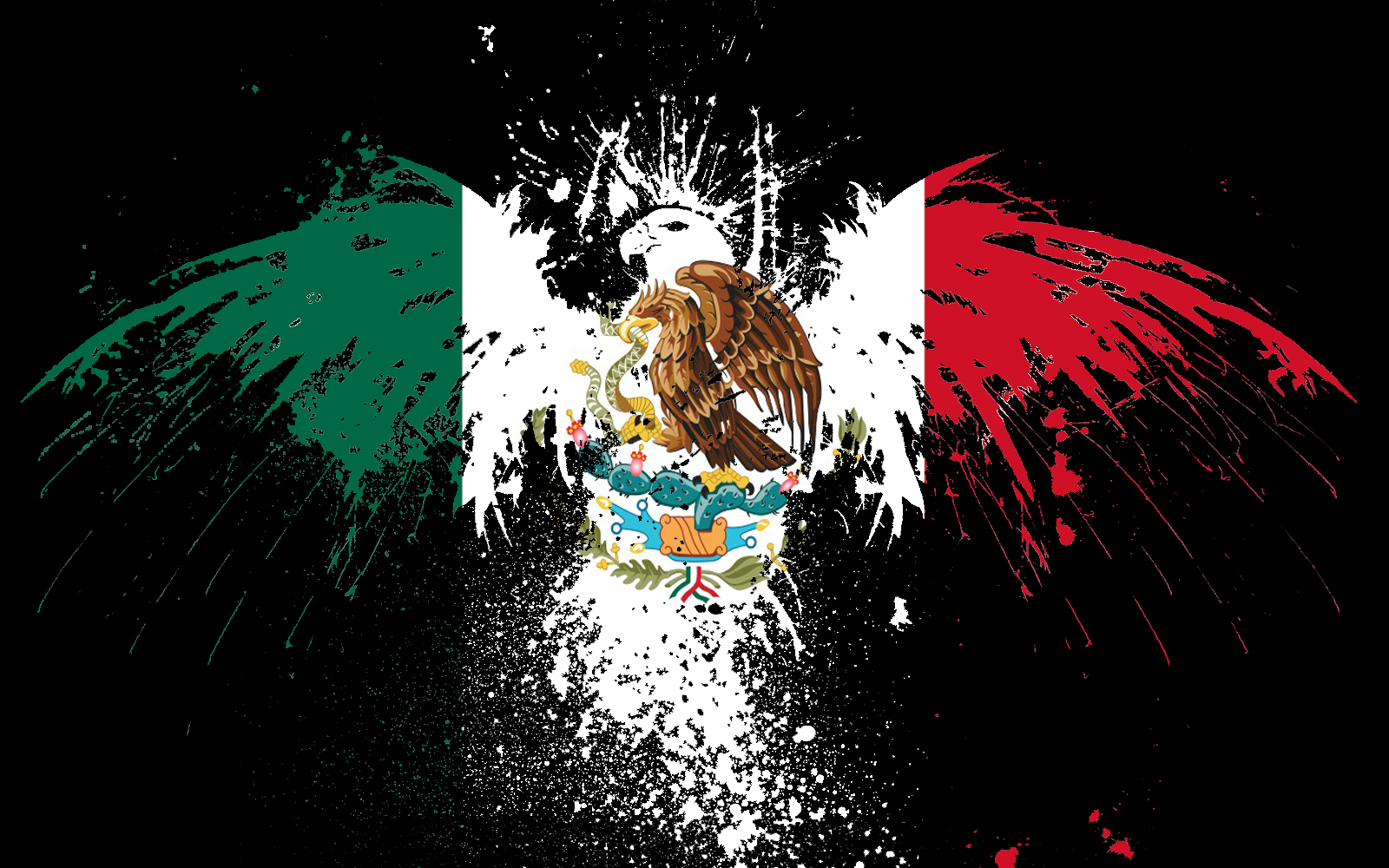combanderabandera mexico mexican flag wallpaper downloadhtm 1600x1000