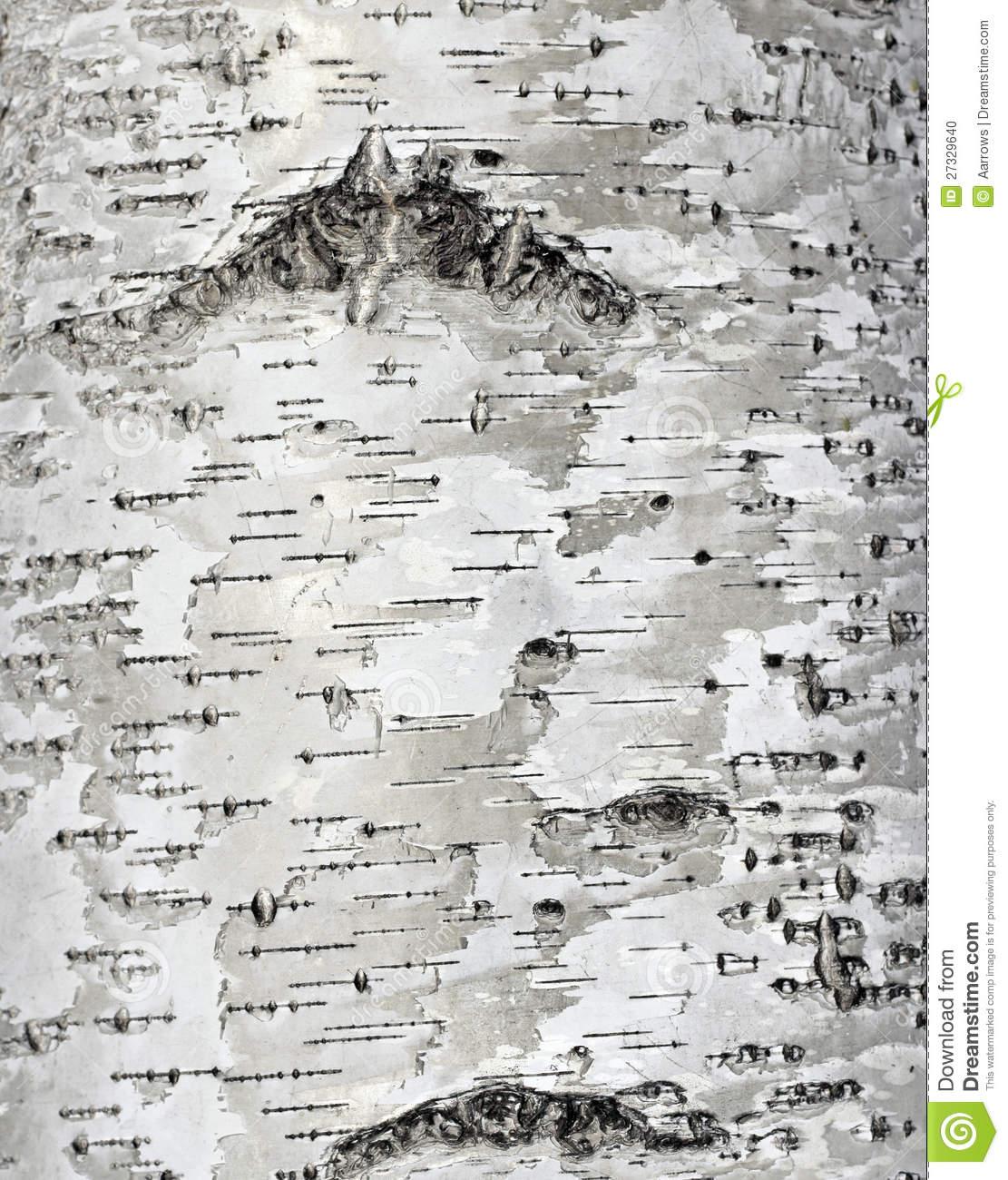 and white textured wallpaper birch 2016   Textured Brick Wallpaper 1111x1300