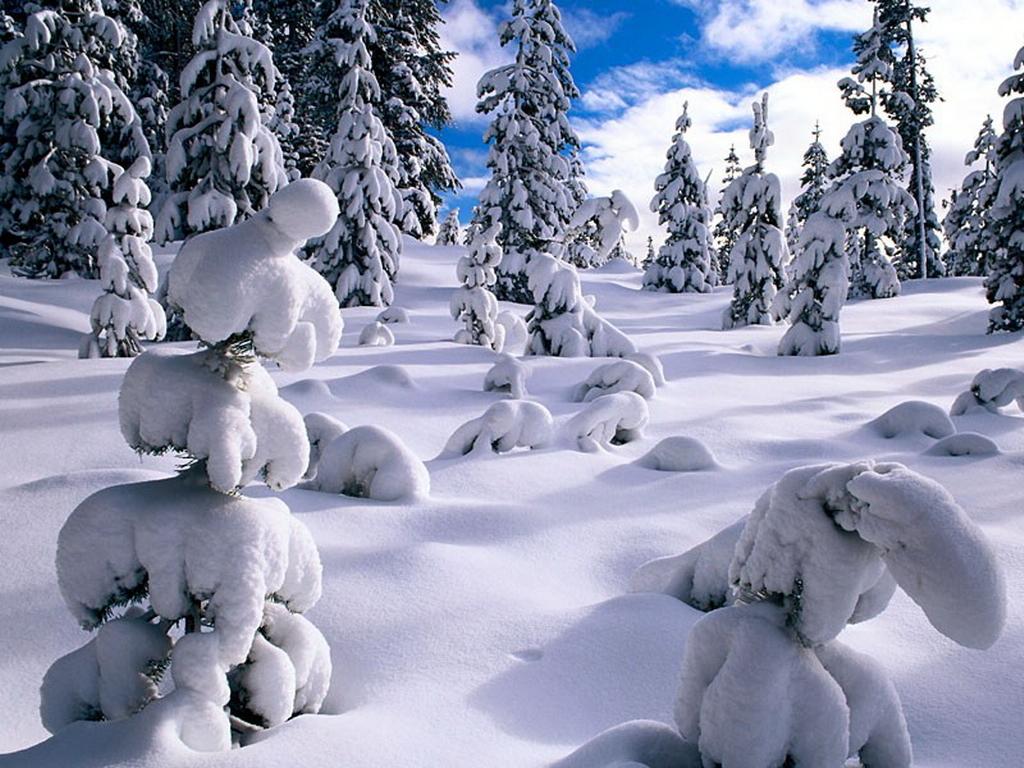 Winter Wallpaper Backgrounds to Warm Up the Desktop   ibytemedia 1024x768