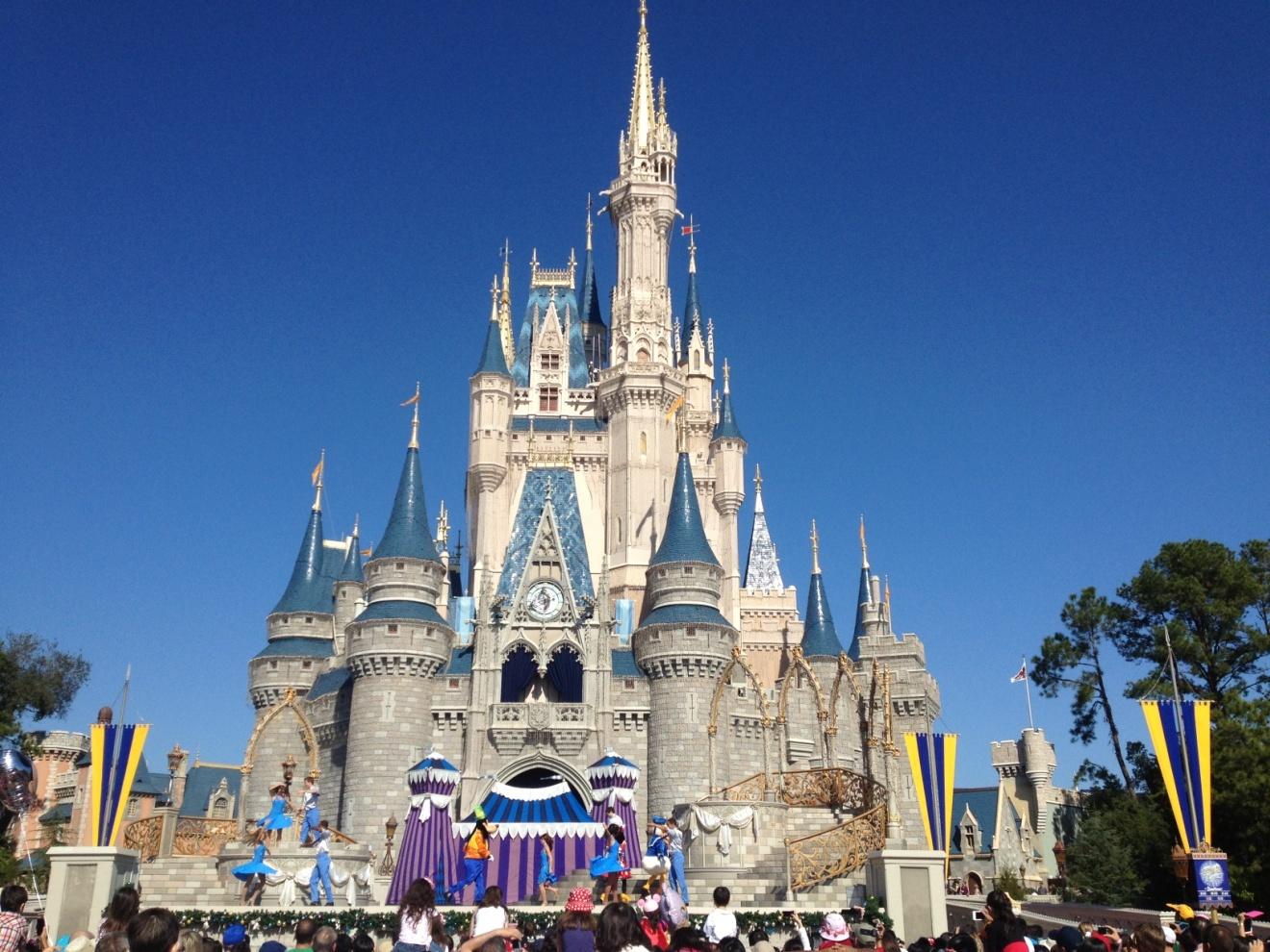 Disney World Princess Castle Images Pictures   Becuo 1320x990