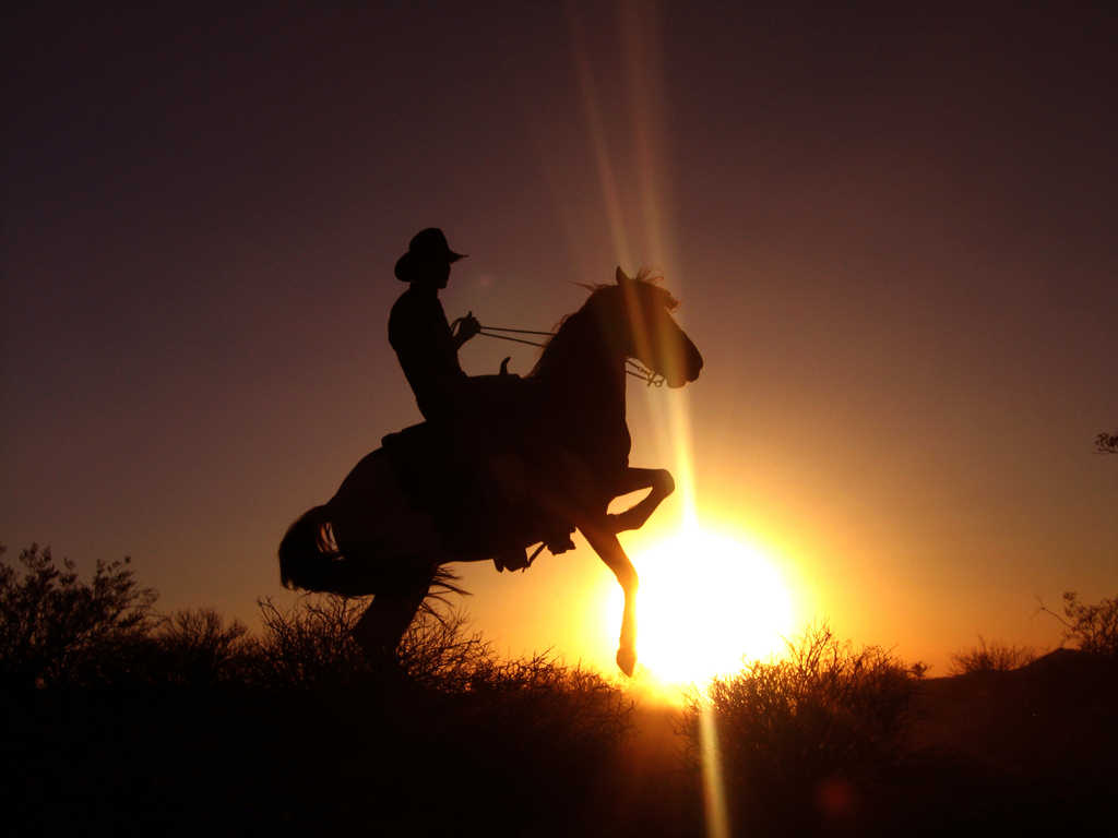 Cowboy - Nature Wallpaper Image featuring Sunrises And Sunsets