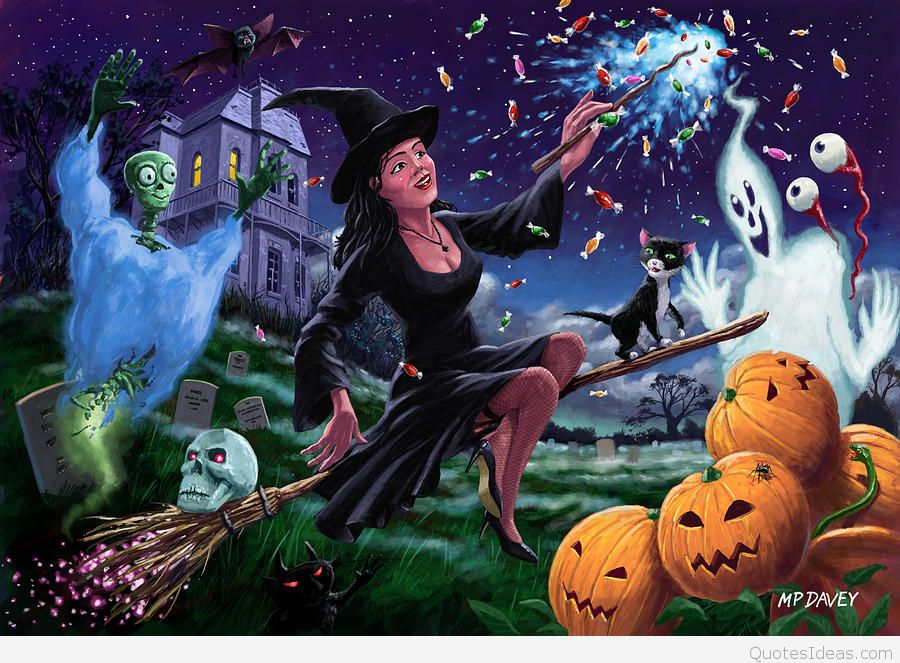 Happy Halloween Witch and pumpkins hd wallpapers 900x663