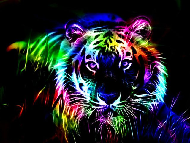 Rainbow Tiger by Fizzy Sprite 640x480