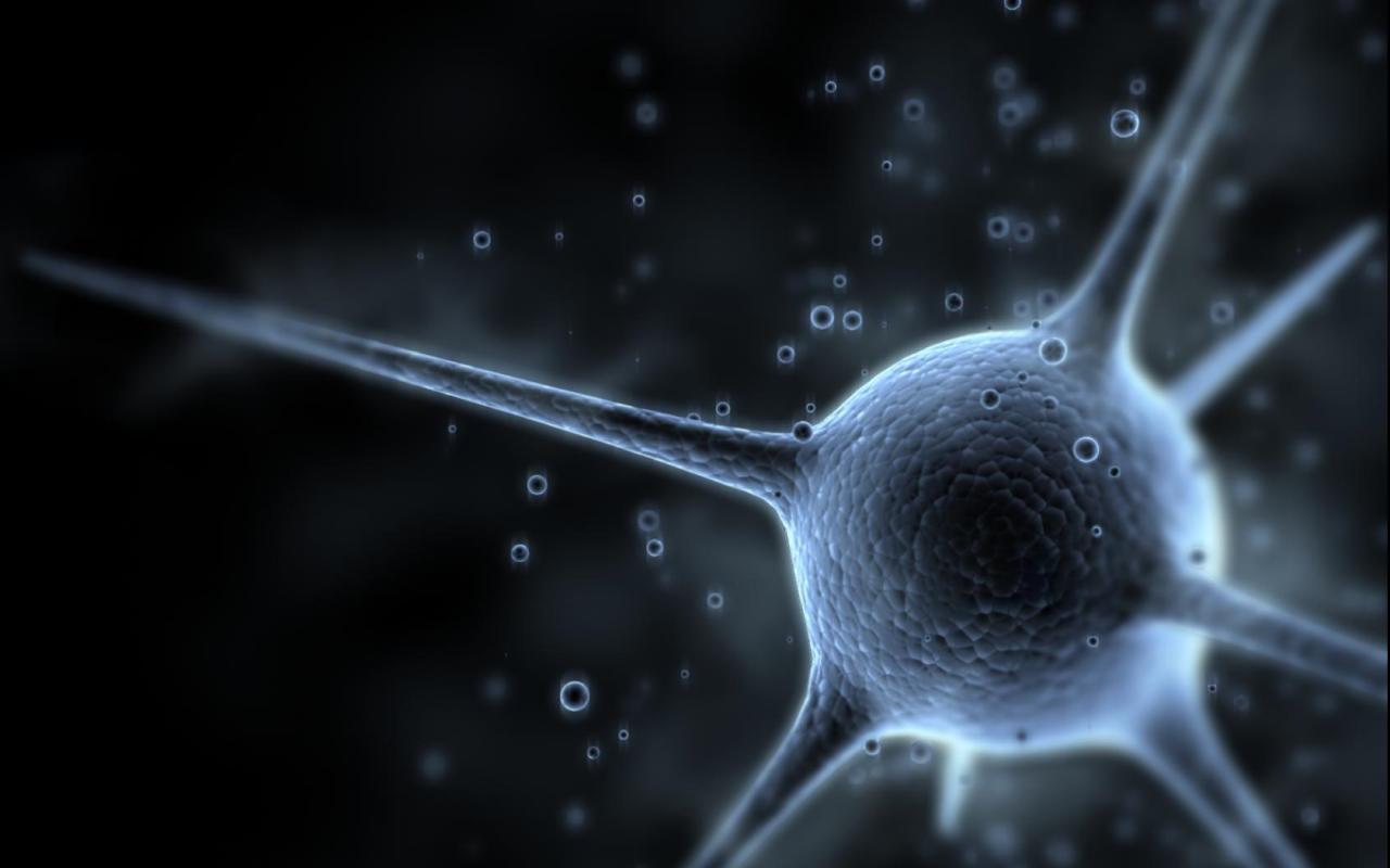 Science Neuron Wallpaper 1280x800 Science Neuron 1280x800