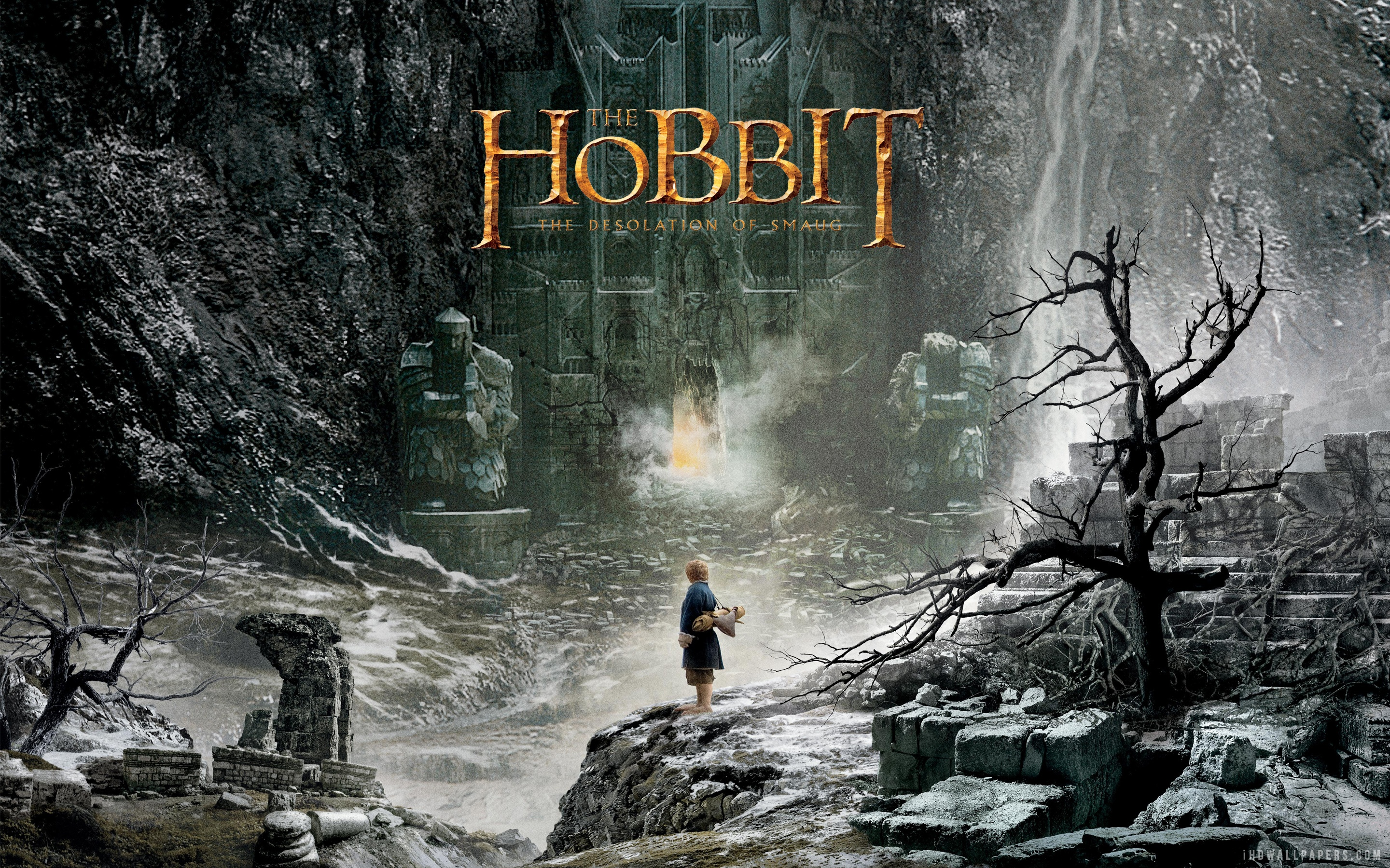The Hobbit Desolation Of Smaug Wallpaper High Resolution 2880x1800