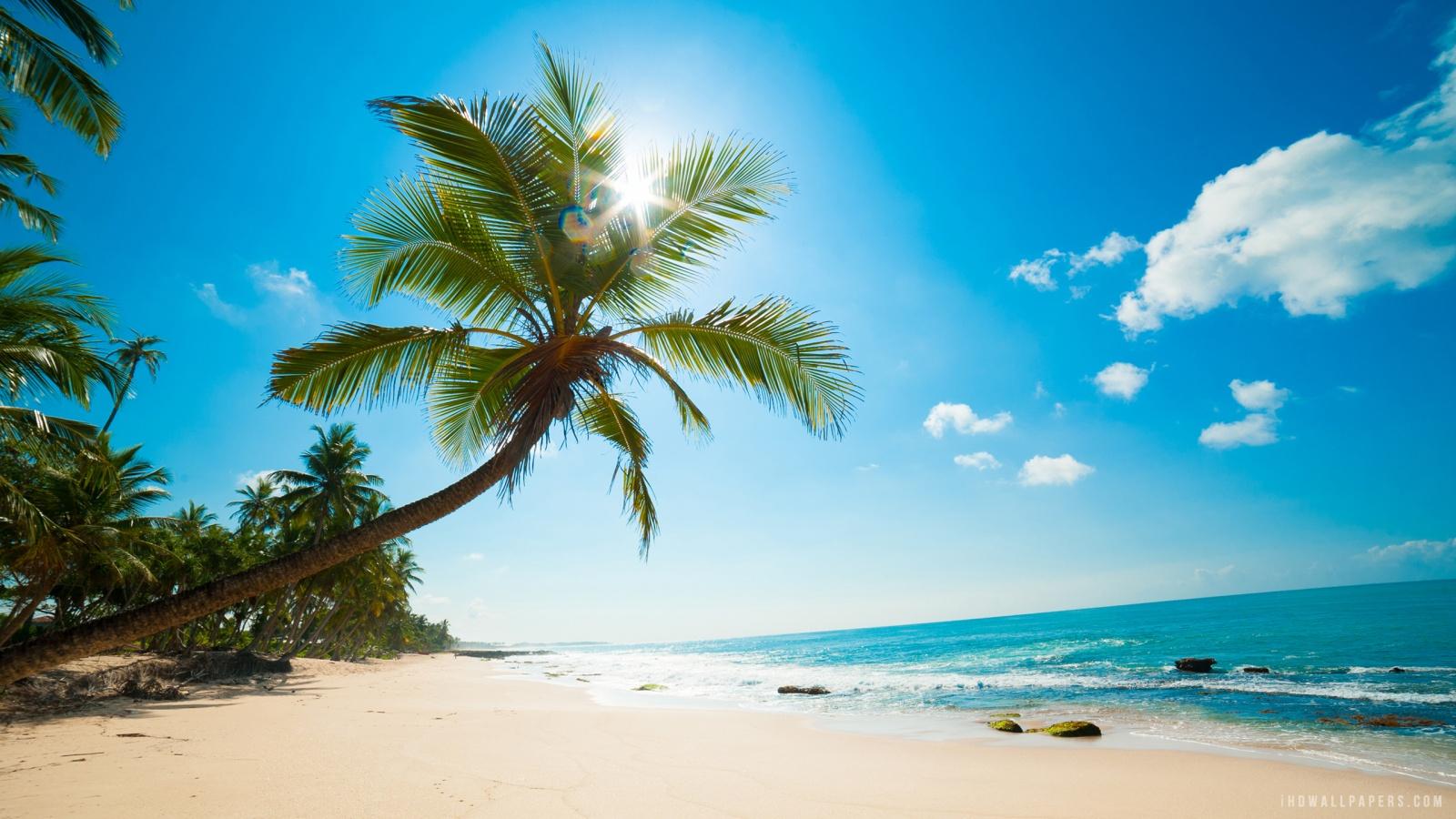 Caribbean Beach HD Wallpaper   iHD Wallpapers 1600x900