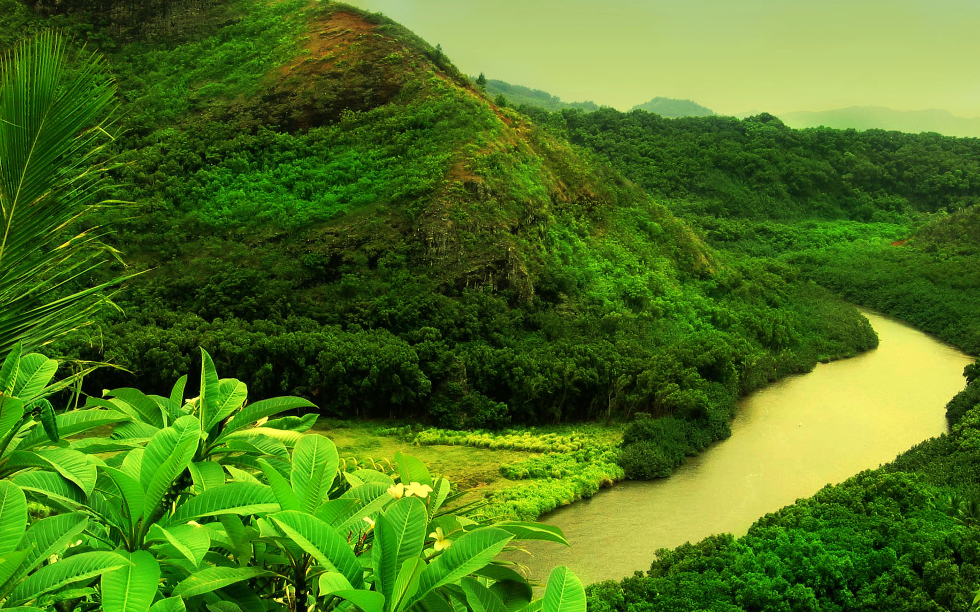 Desktop Contrast Background Green Lscape Nature wallpapers HD 1920x1200