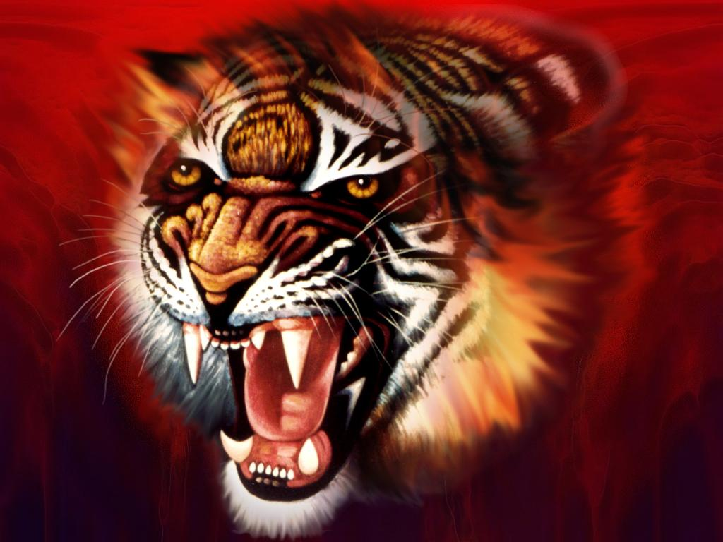 Cool 3D Desktop Wallpaper Tiger - WallpaperSafari