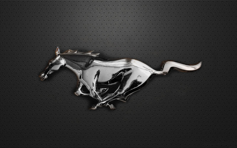 Mustang Logo by danyal tr 800x500