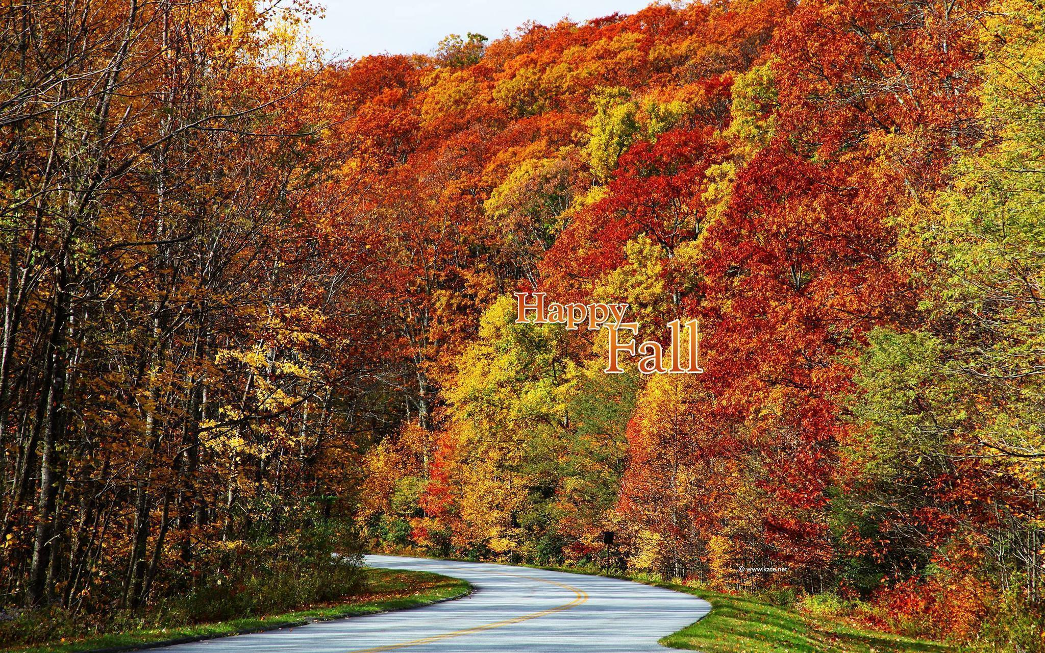 Fall Color Wallpapers - Wallpaper Cave