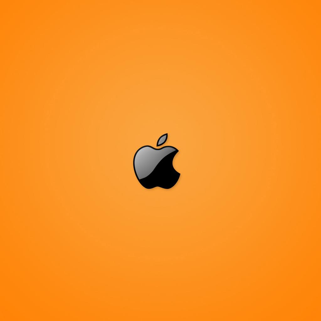 iPad Wallpapers New apple logo 5   Apple iPad iPad 2 iPad mini 1024x1024