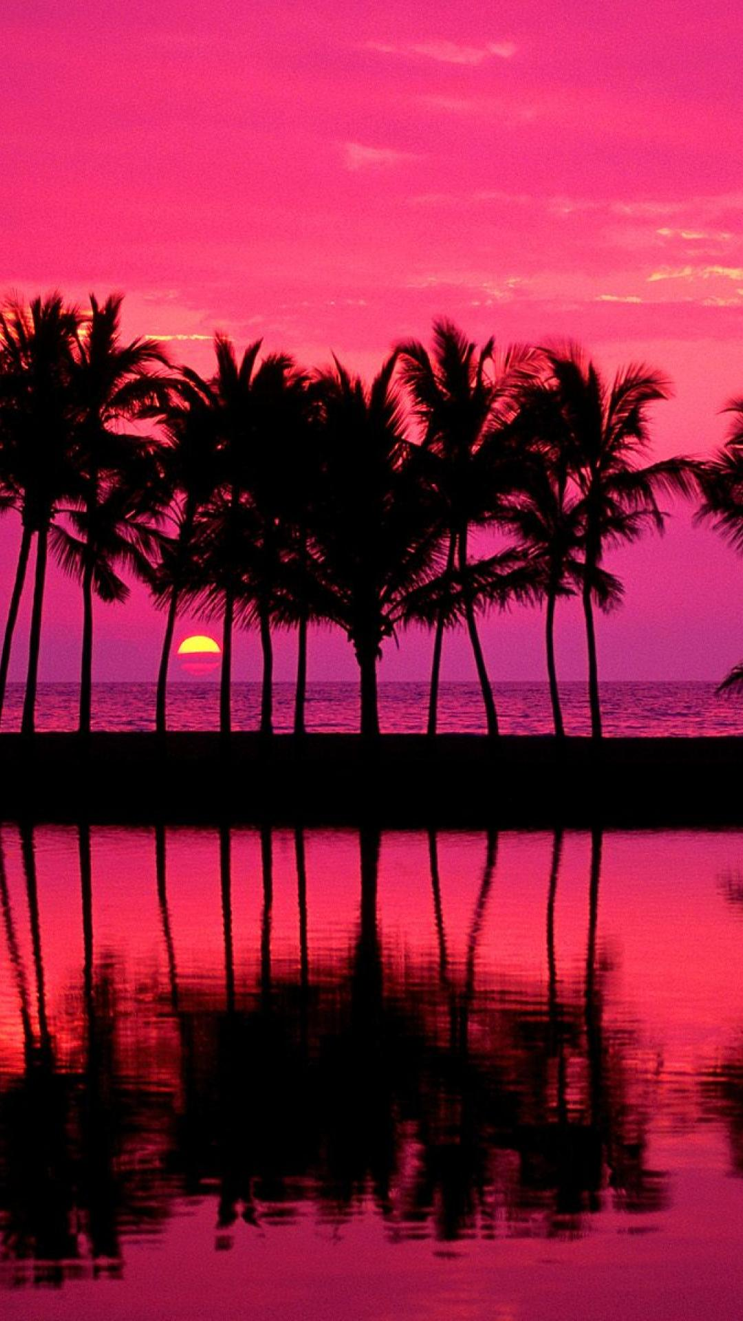 Wallpaper download girly - Tumblr Palm Trees Girly Pink Iphone 6 Plus Wallpaper