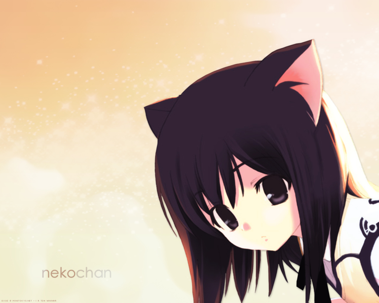 Lexiomega images Neko HD wallpaper and background photos 1280x1024