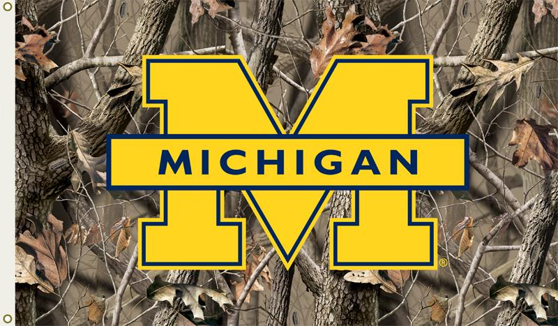 michigan wolverines wallpaper   wwwhigh definition wallpapercom 800x467