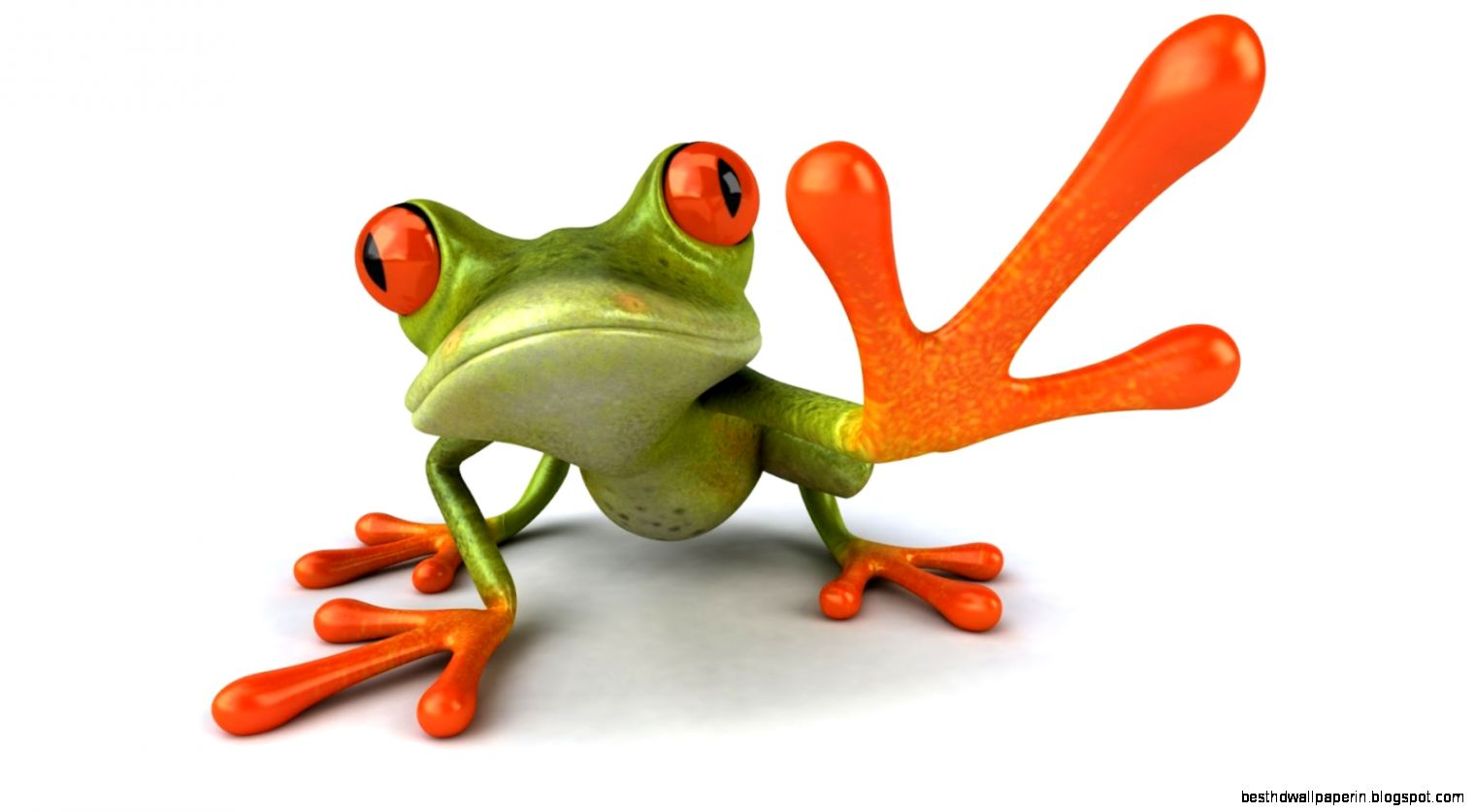 47 frog wallpaper free on wallpapersafari - Funny frog pictures ...