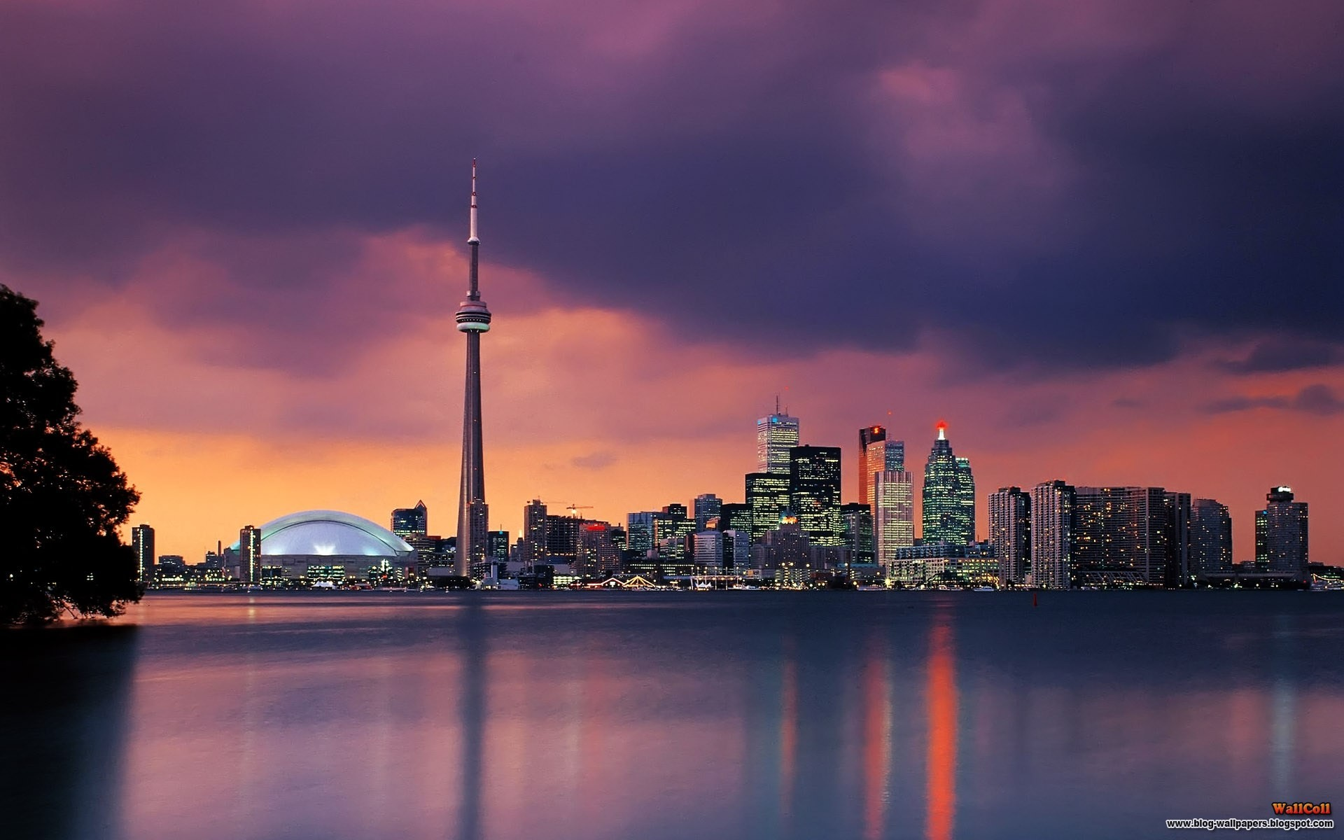 Skylines Night Toronto Cities Night City Fresh New Hd Wallpaper 1920x1200