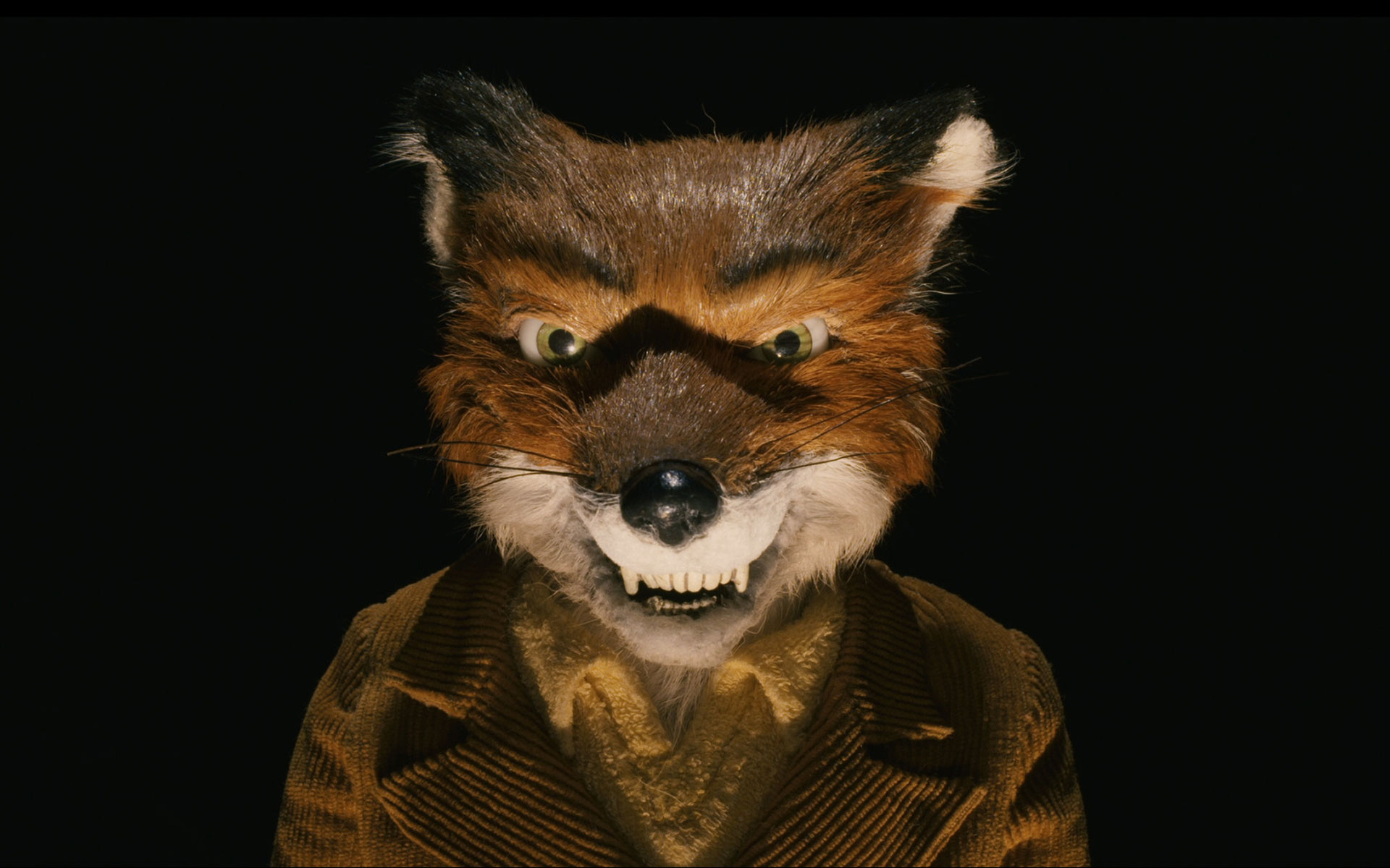 48 Fantastic Mr Fox Wallpaper On Wallpapersafari