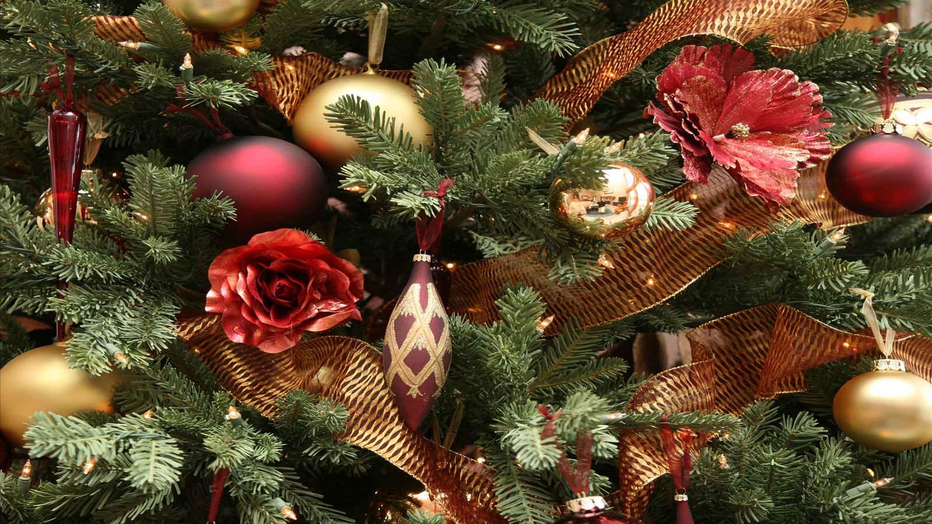 Festive Christmas Tree Wallpaper Free Hd