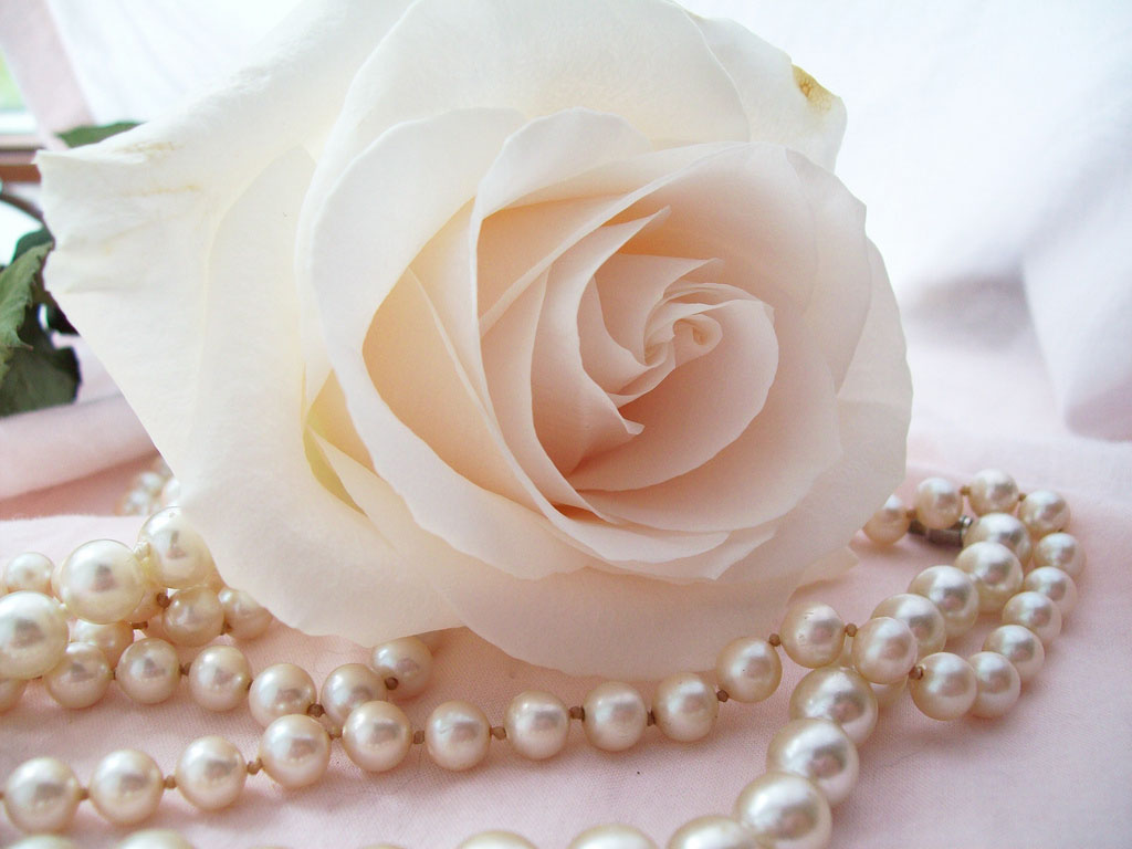 Pearls With Flowers Wallpapers Pearls WithFlowers Desktop Wallpapers 1024x768