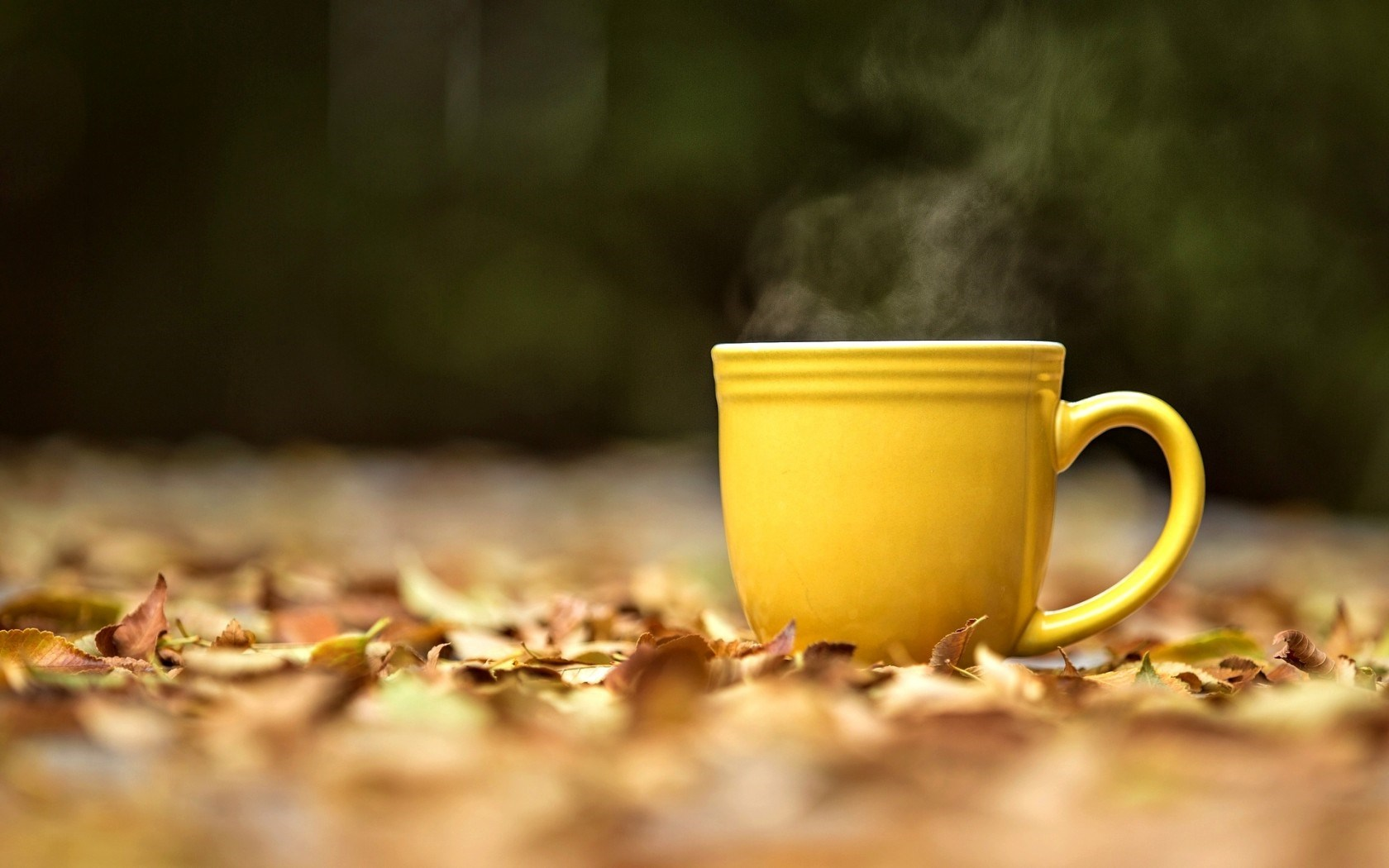 Yellow Cup Of Tea Wallpapers 1680x1050