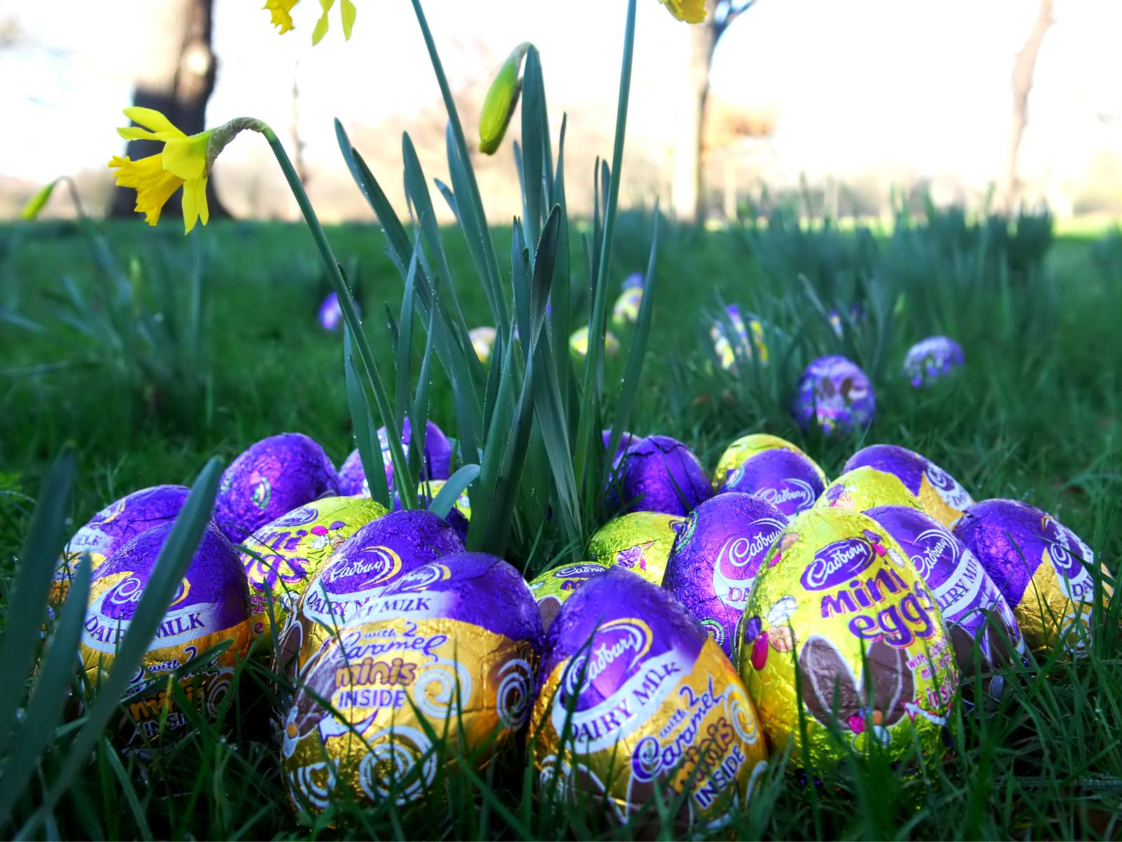 Holiday Wallpapers HD Easter Wallpapers 1600x1200