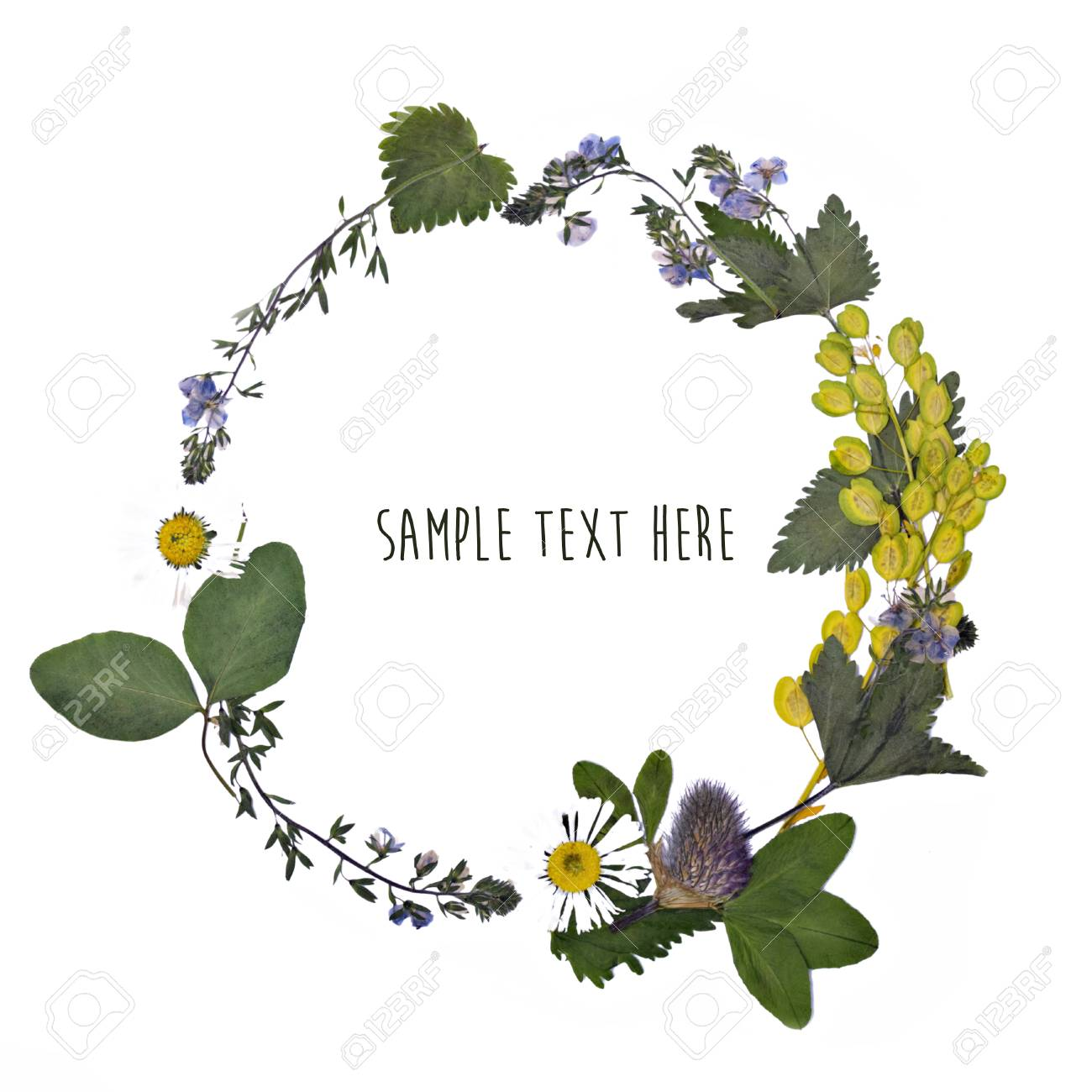 Pressed And Dried Flowers Wreath Background Stock Photo Picture 1300x1300