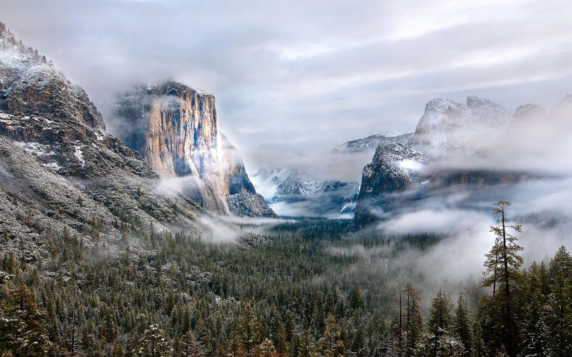 Yellowstone National Park Winter   1920x1200   HD Wallpaper 1920x1200