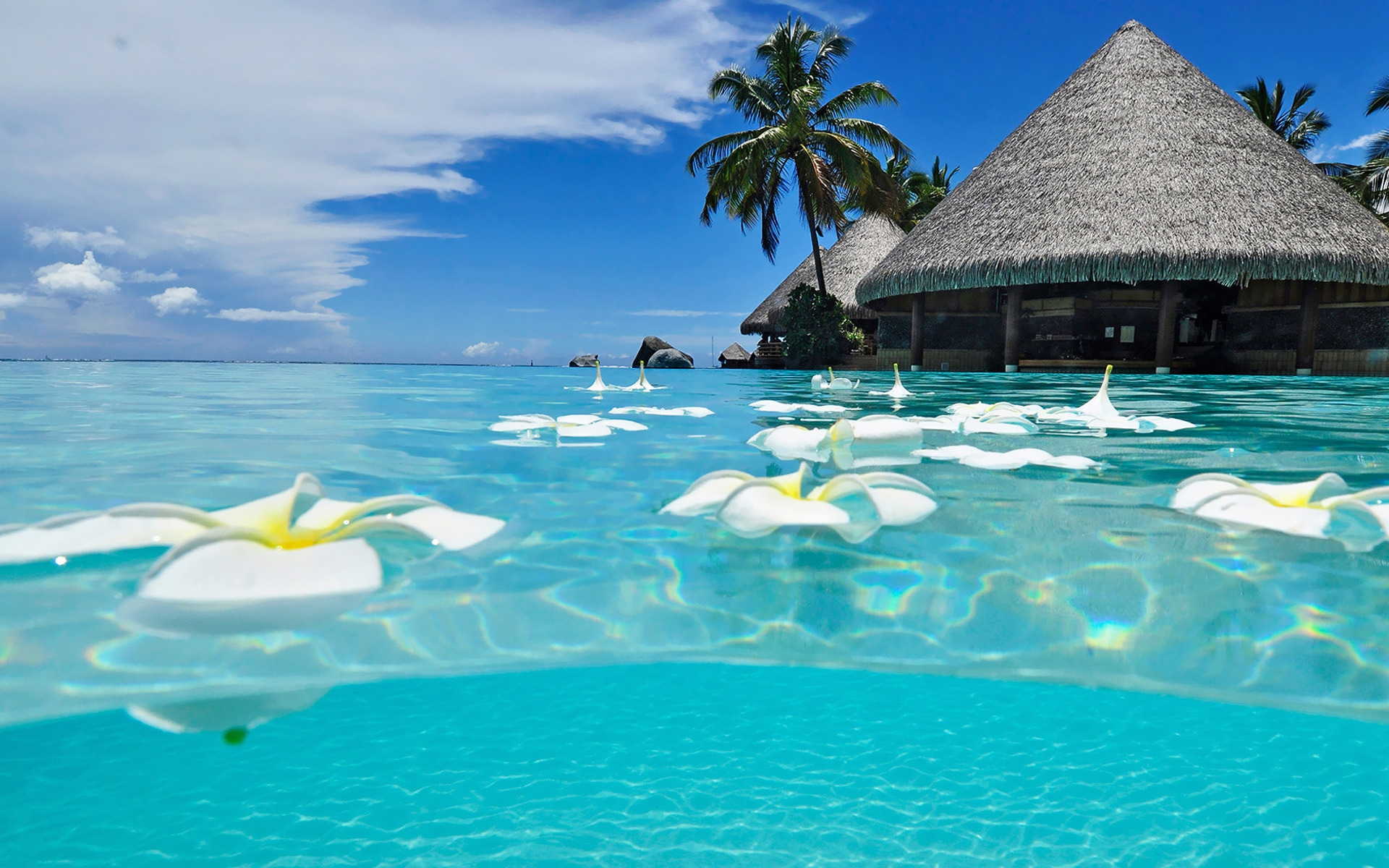 Most Beautiful Beaches In The World Wallpaper 13967 Wallpaper 1920x1200