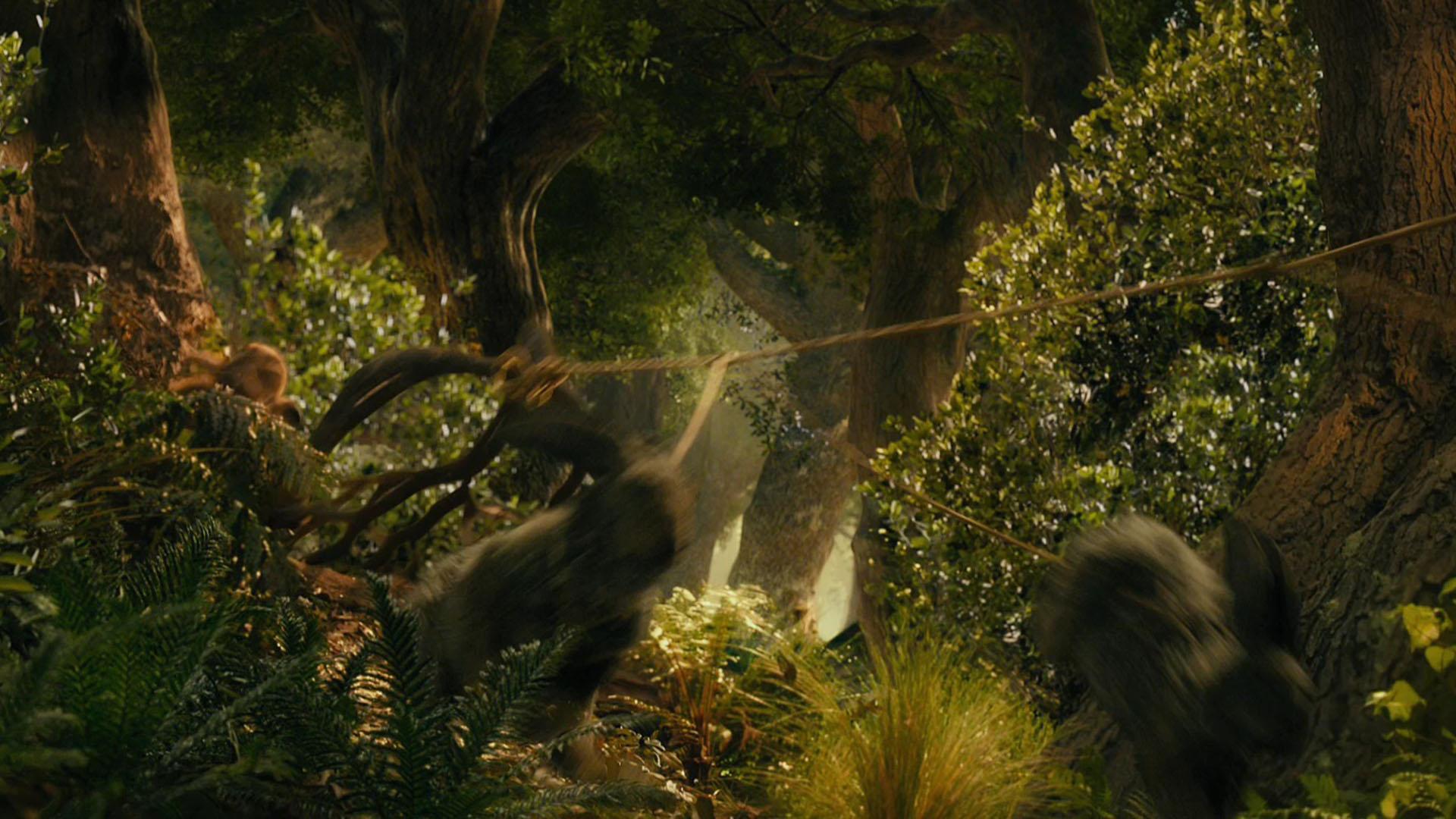 the hobbit desktop wallpaper wallpapersafari