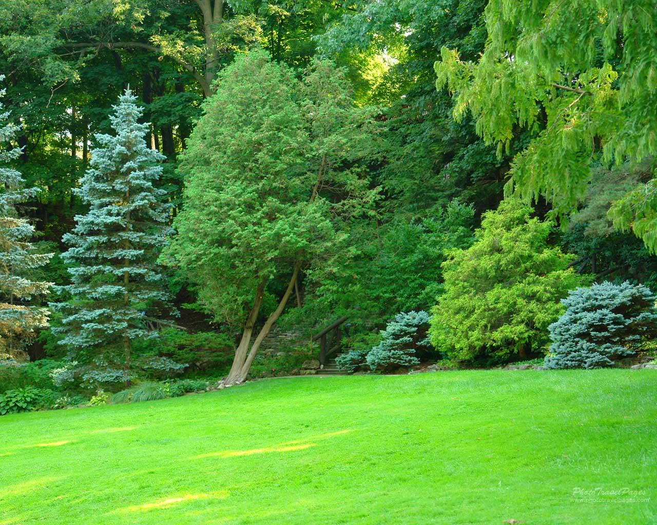 Green Park Garden HD Wallpaper   PhotosJunction 1280x1024