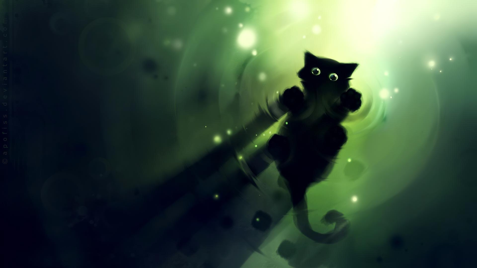 wallpaper desktop kitten nocturnal 1920x1080