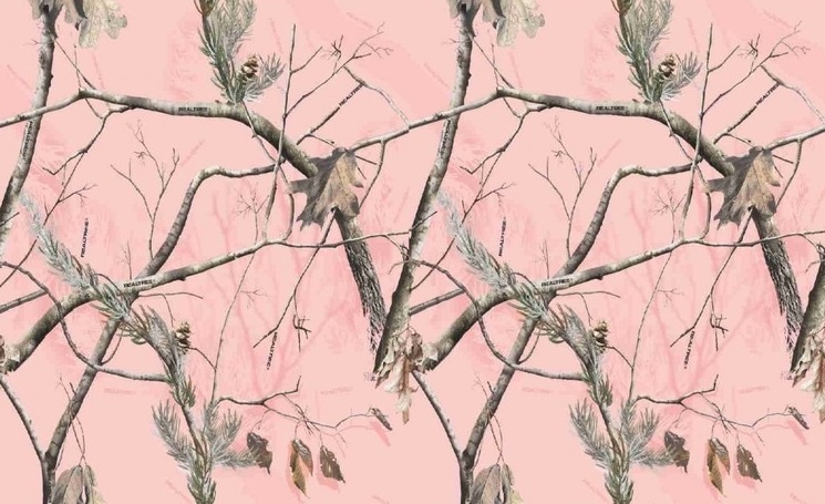 Pink Realtree Camo phone wallpaper by katelin 2013 745x455