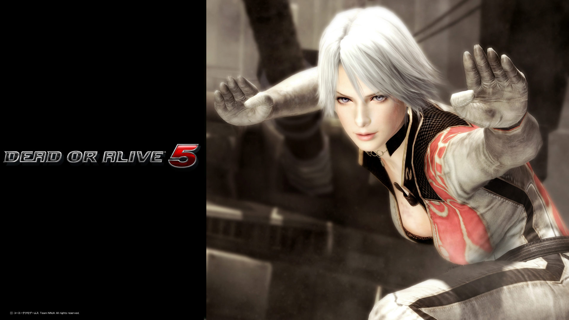 Sexy bunny costumes for Dead or Alive 5 with wallpaper image 4 1920x1080
