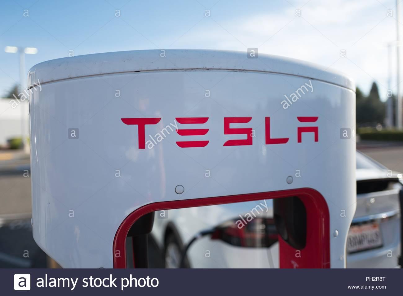 Close up of Tesla Motors logo on Supercharger electric vehicle 1300x956