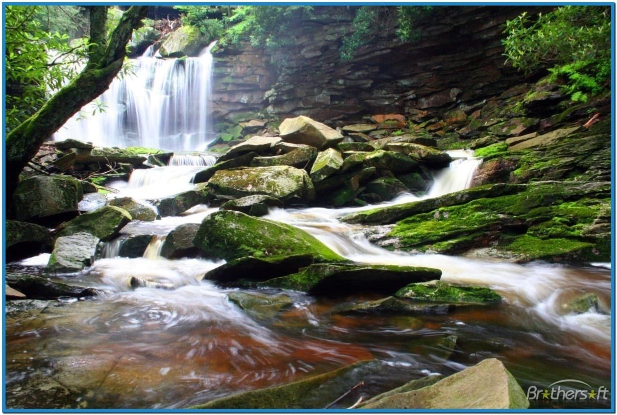 Download Live waterfall screensaver with sound 1232x829