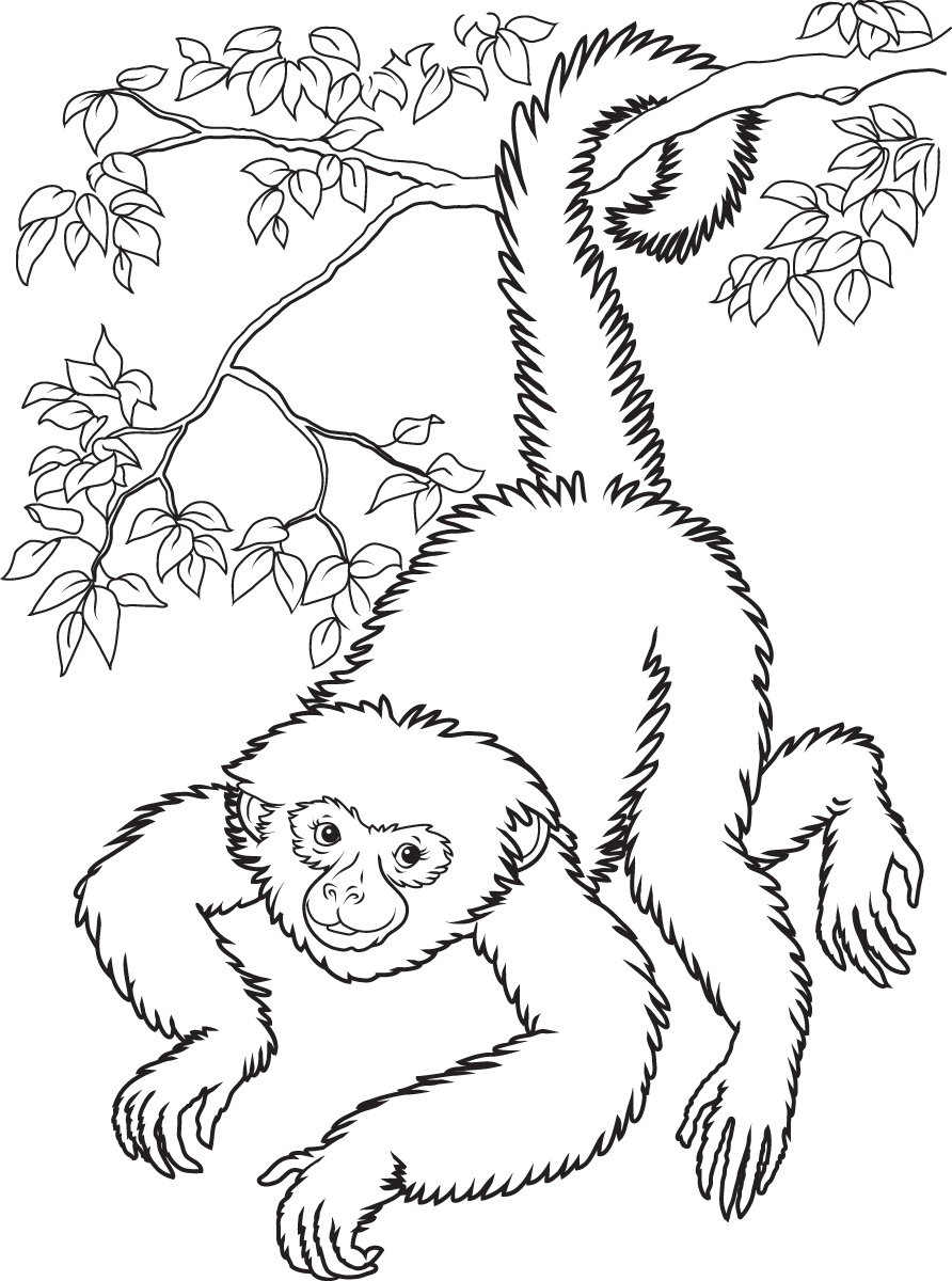 Sock Monkeys in Love: Kids Coloring Pages - Personal Creations Blog | 1200x892