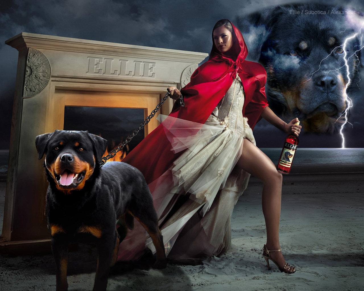 Rottweiler full movie free