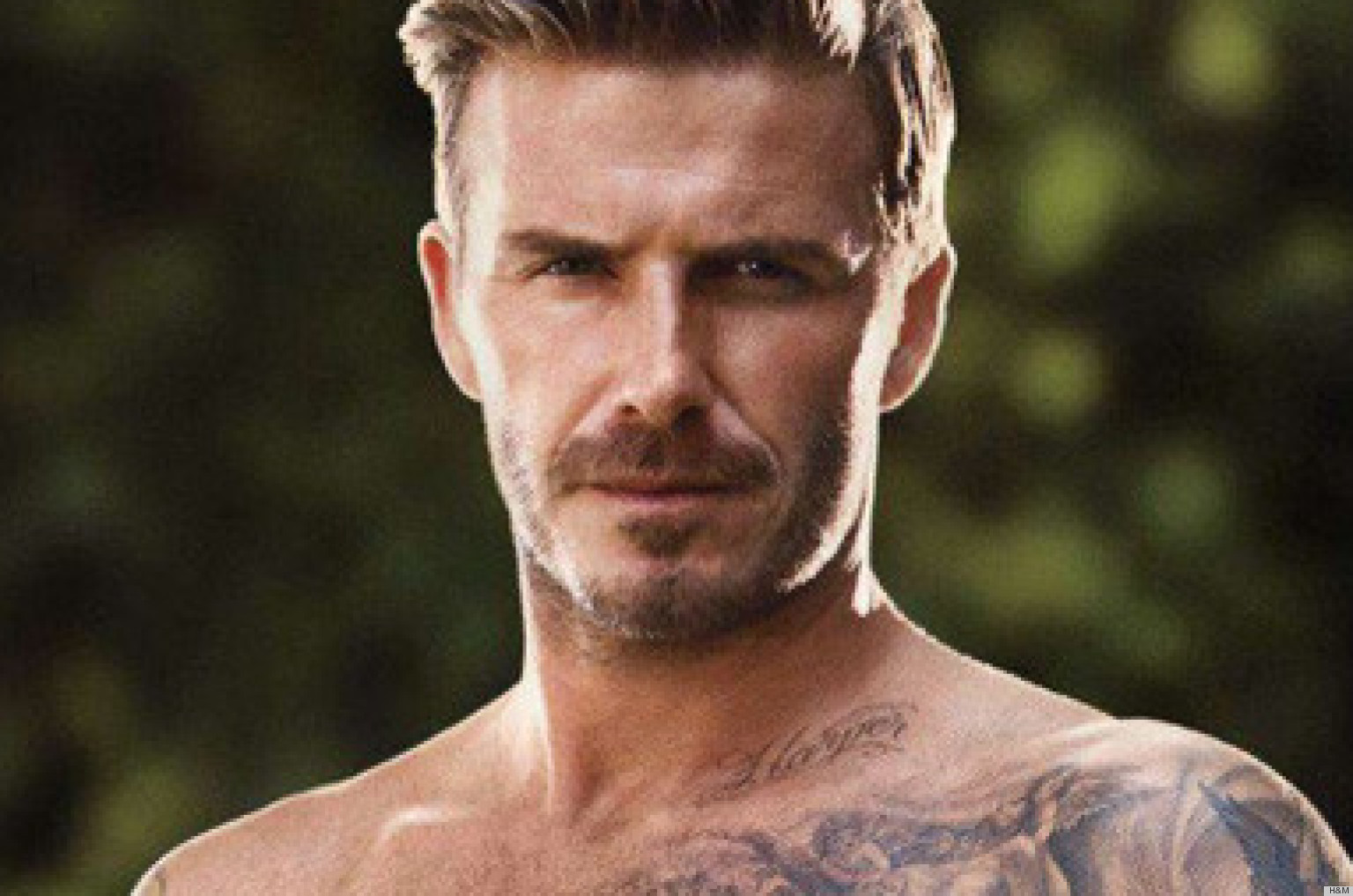 David Beckham 2013 Wallpapers 1536x1017