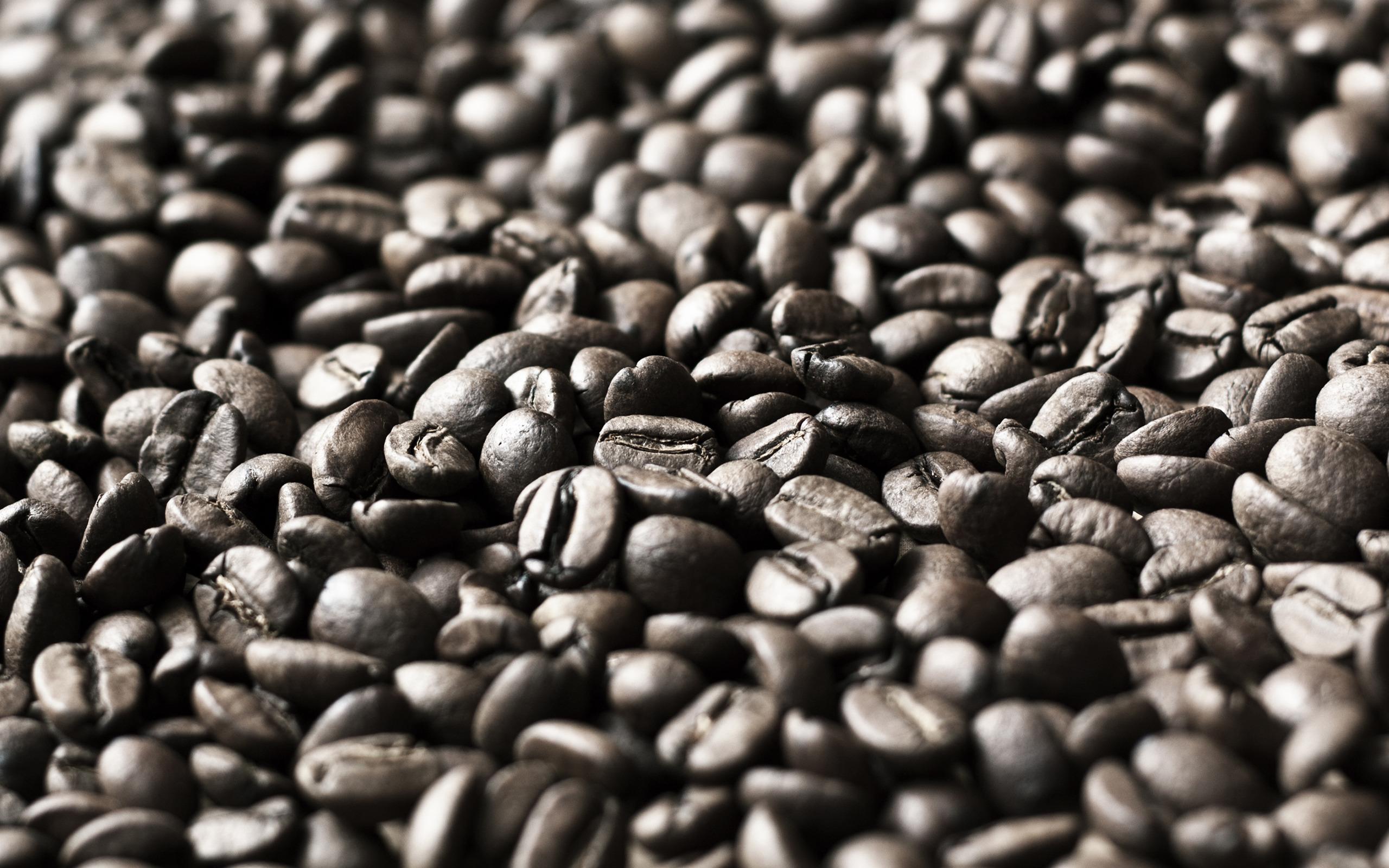 High definition desktop wallpaper of corn photo of coffee background 2560x1600