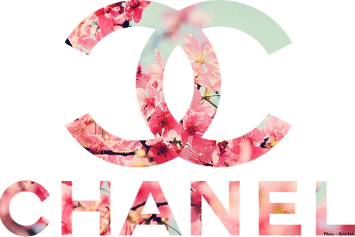 tags for this image include chanel flowers pink fashion and love 500x334