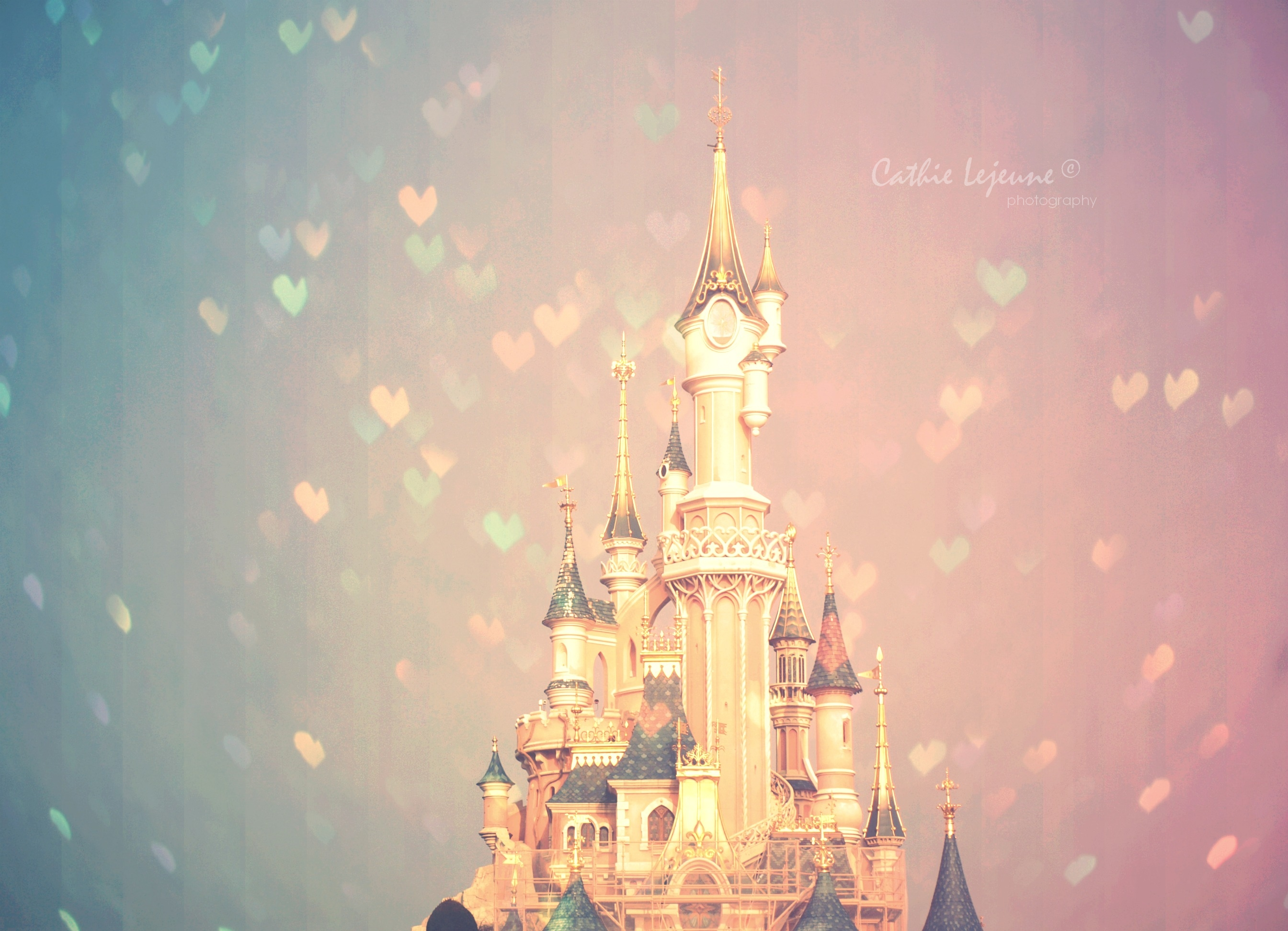 Sleeping Beauty Castle Wallpaper Wallpapersafari