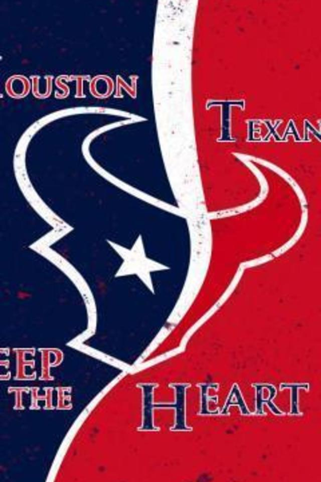 Houston Texans Game of Thrones Style Wallpaper for iPhone 4 640x960