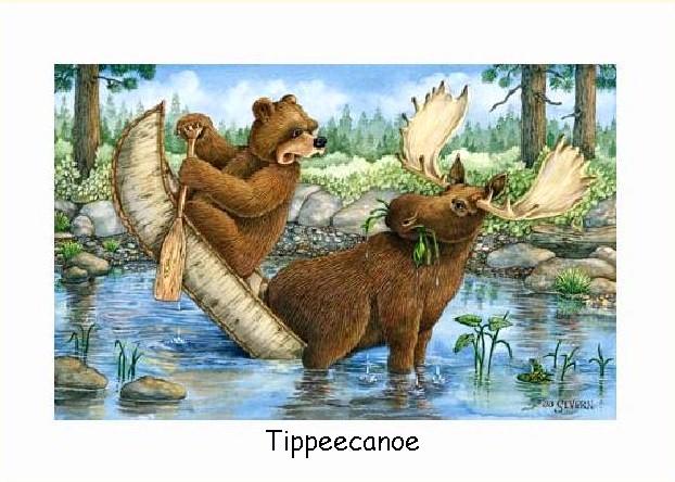 moose bear   get domain pictures   getdomainvidscom 622x444